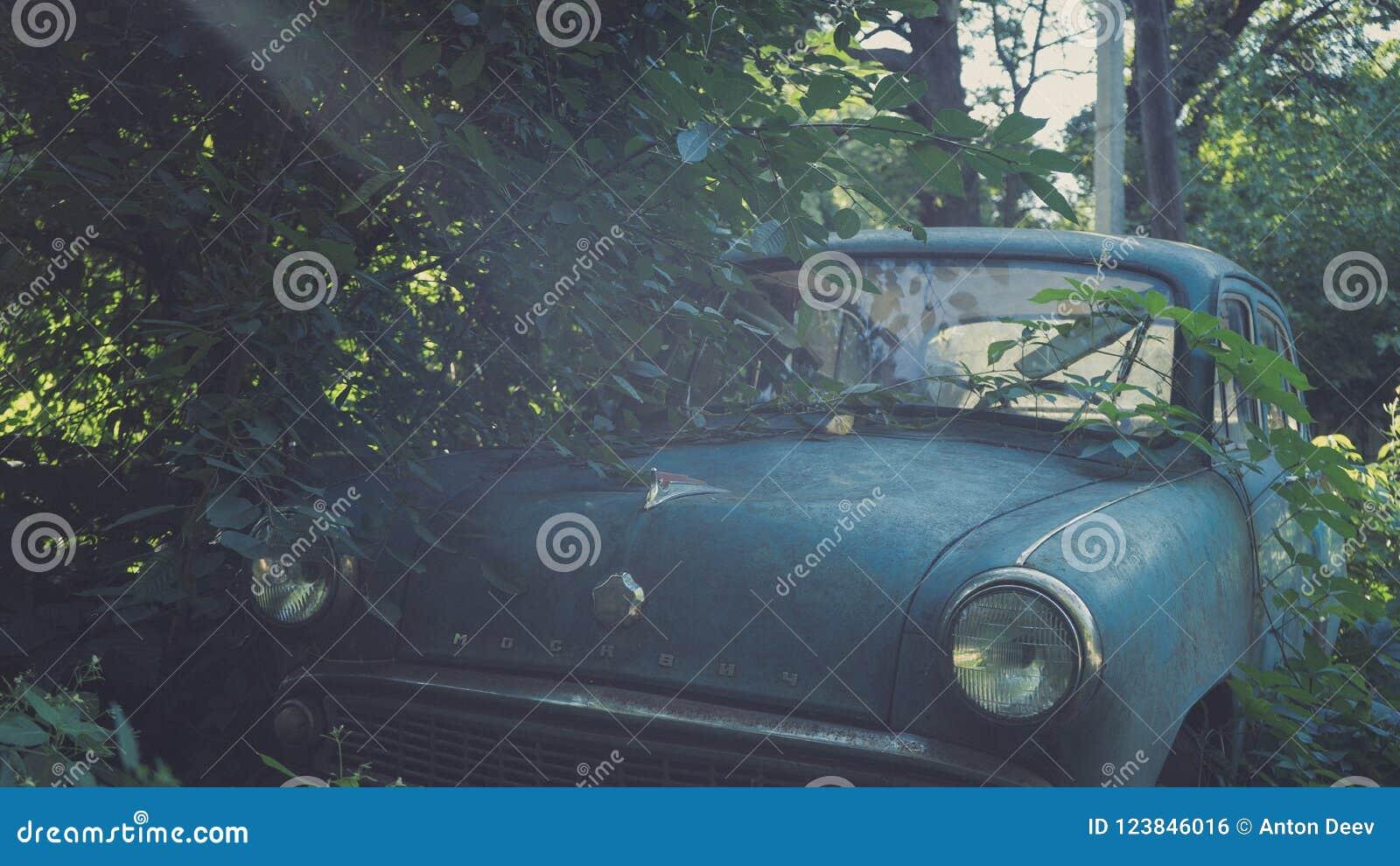 Carro azul soviético retro coberto de vegetação com a grama Carro clássico que oxida em um campo do ` s do fazendeiro