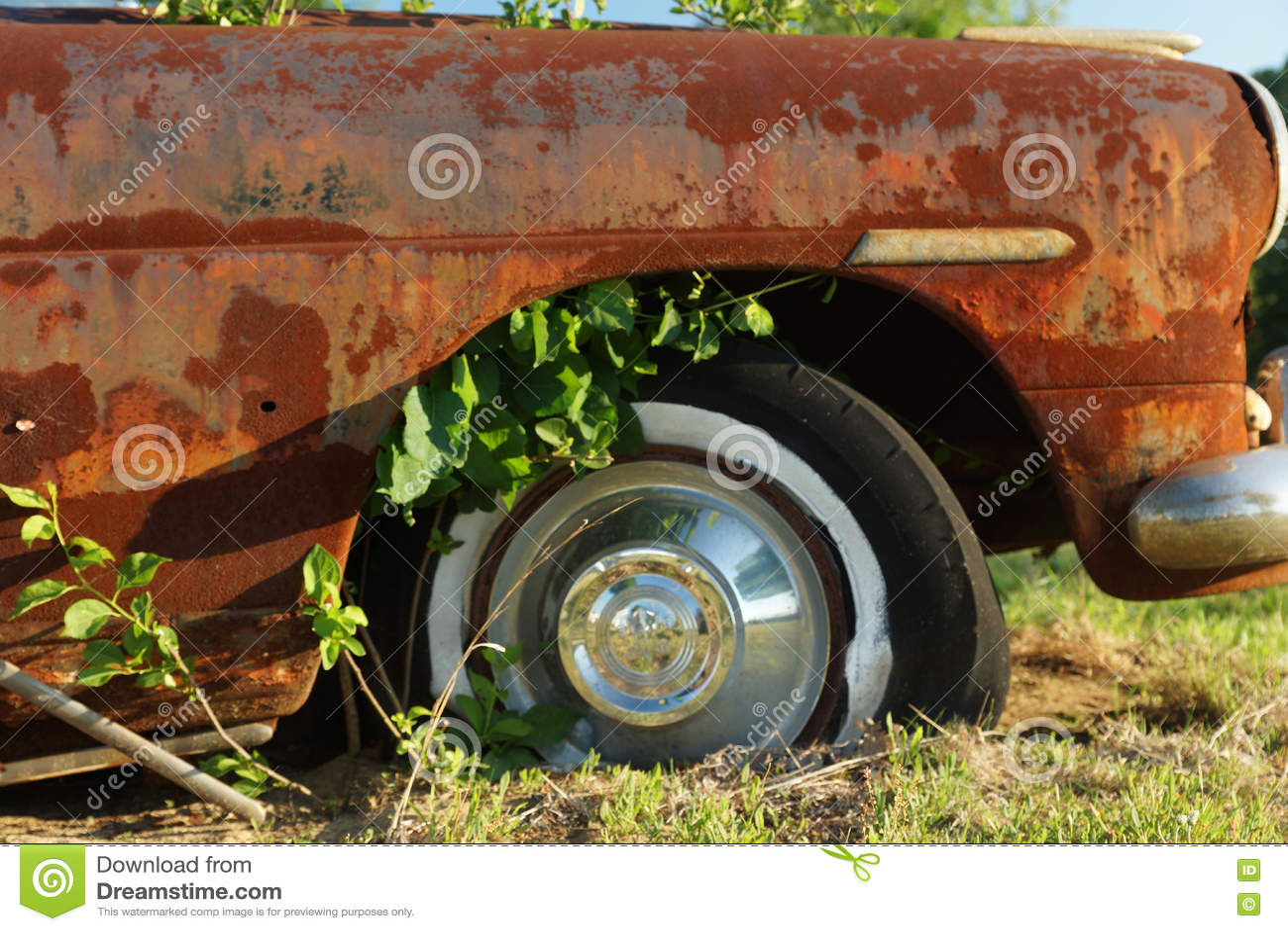 Carro de Abandaned no campo