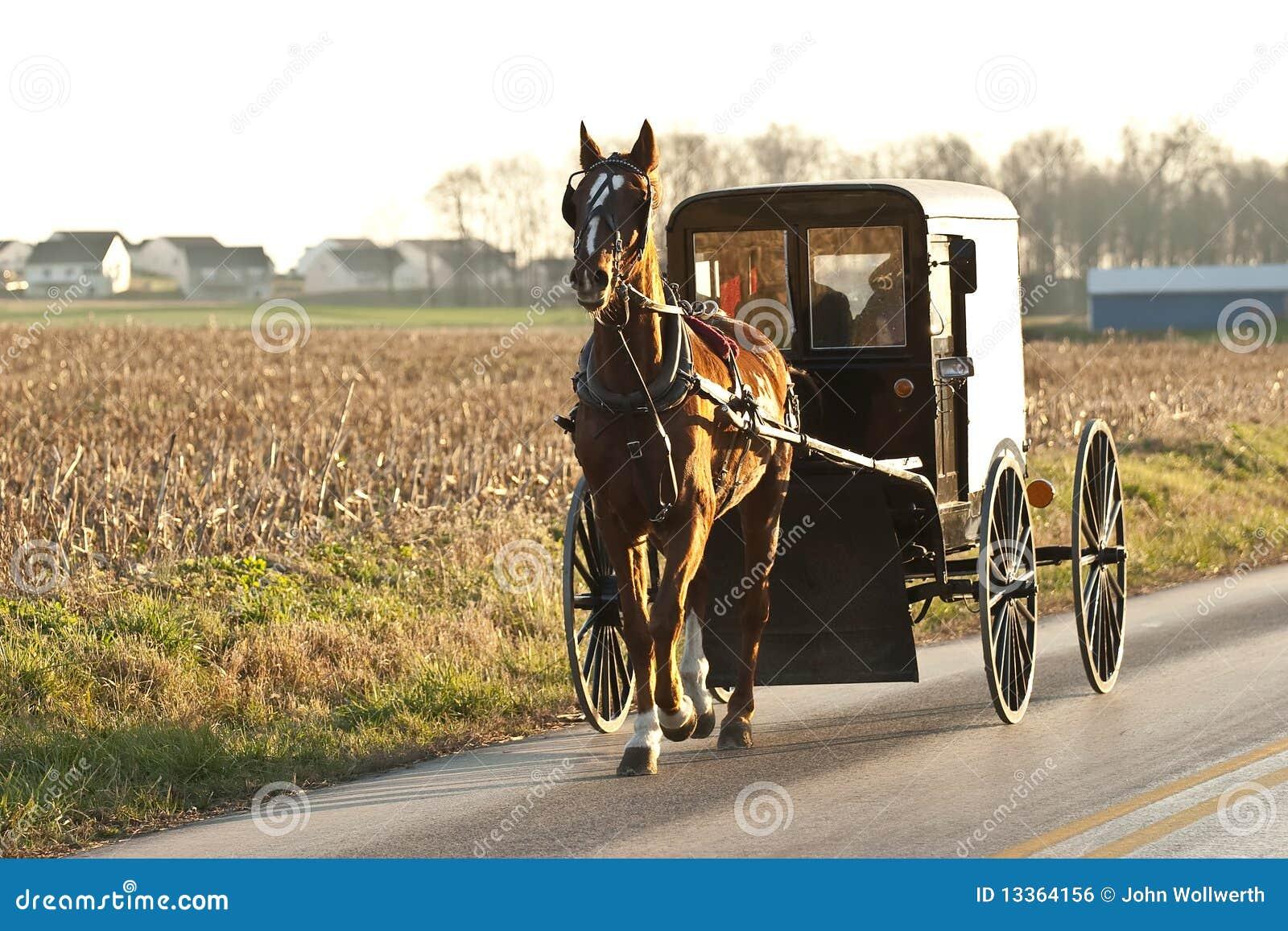 Carro de Amish
