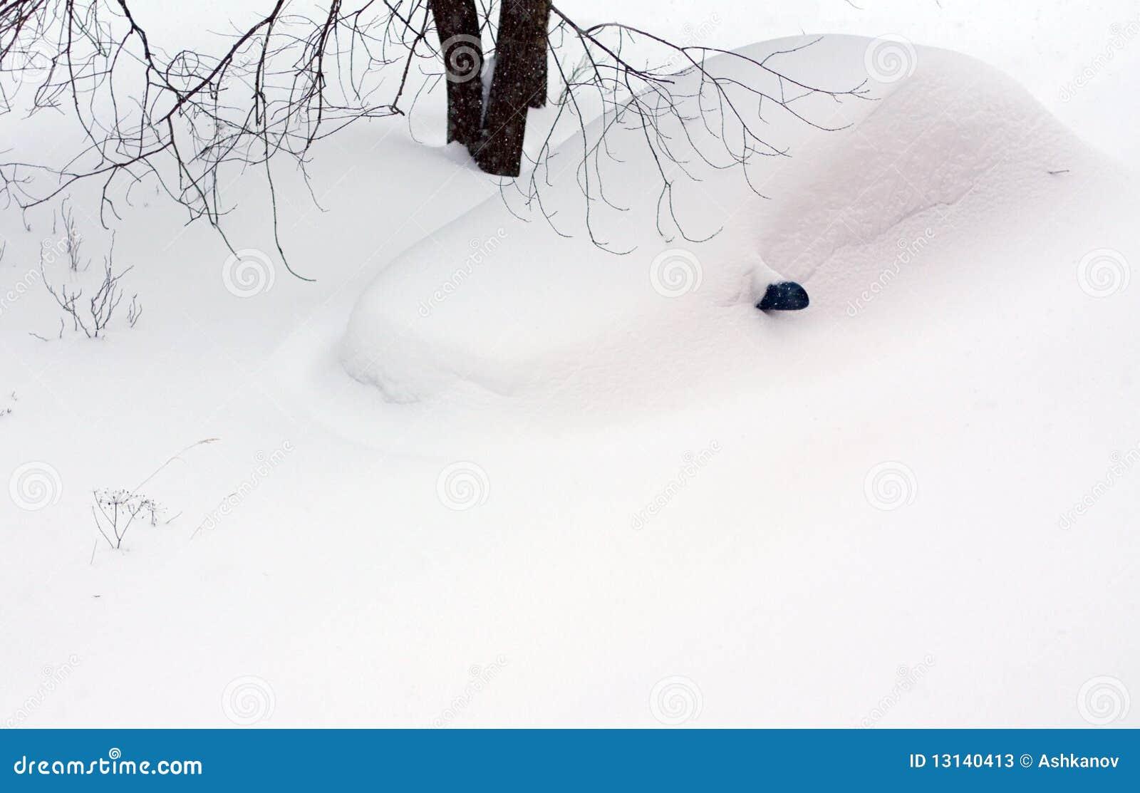 Carro sob o snowdrift
