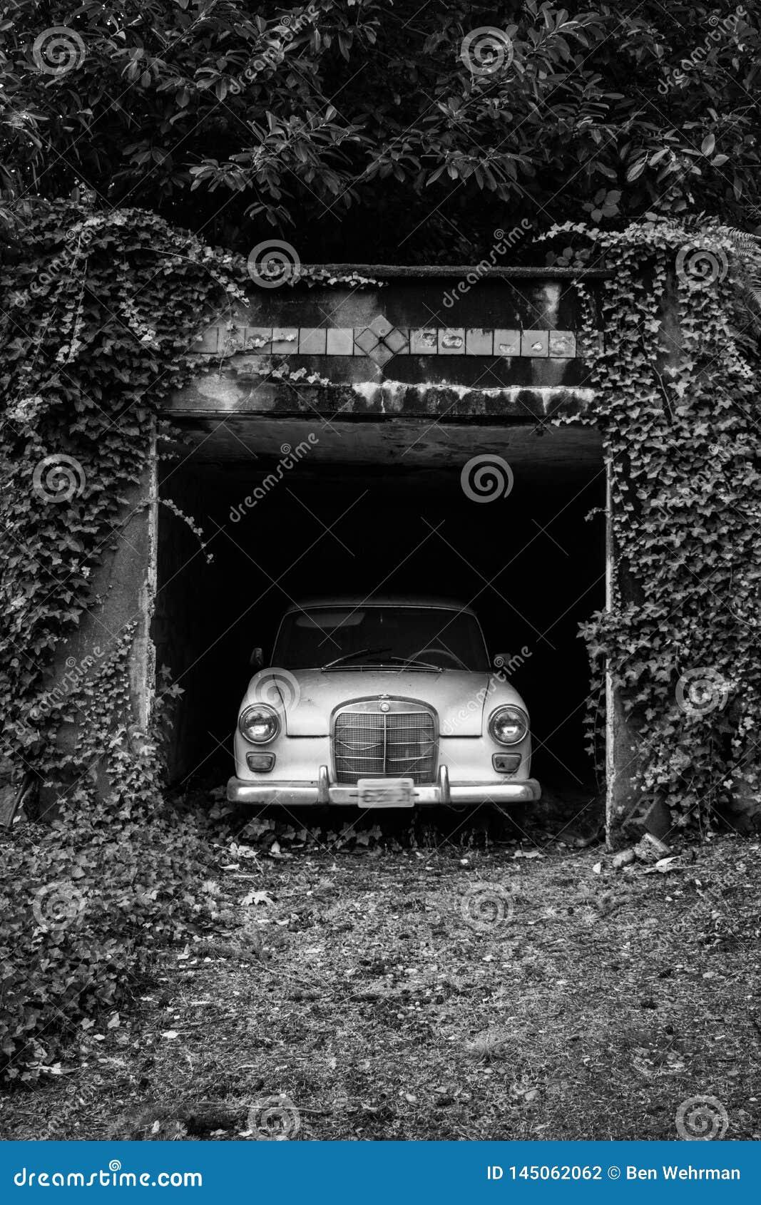 Carro velho em uma entrada de automóveis coberto de vegetação