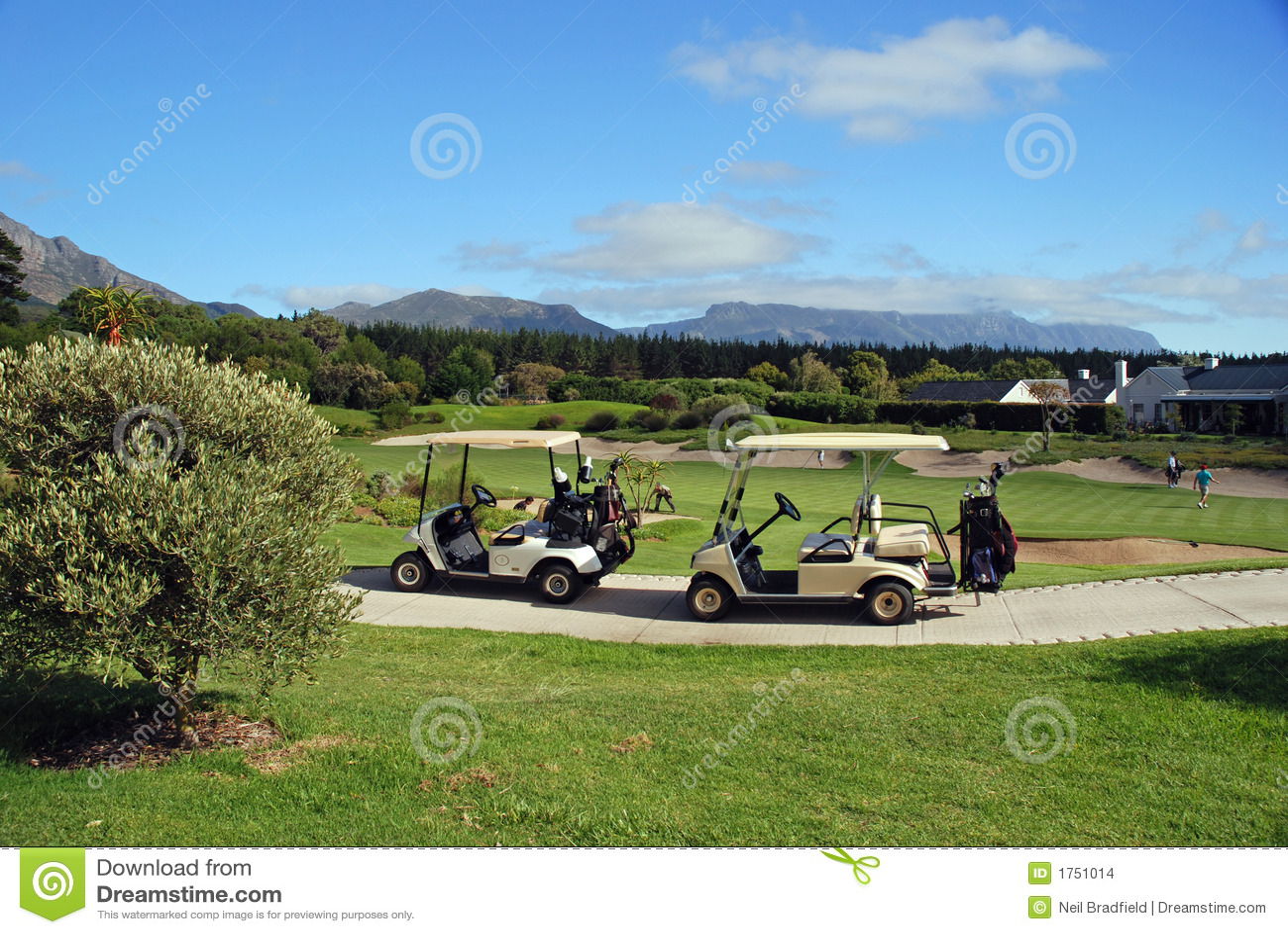 Carros de golfe
