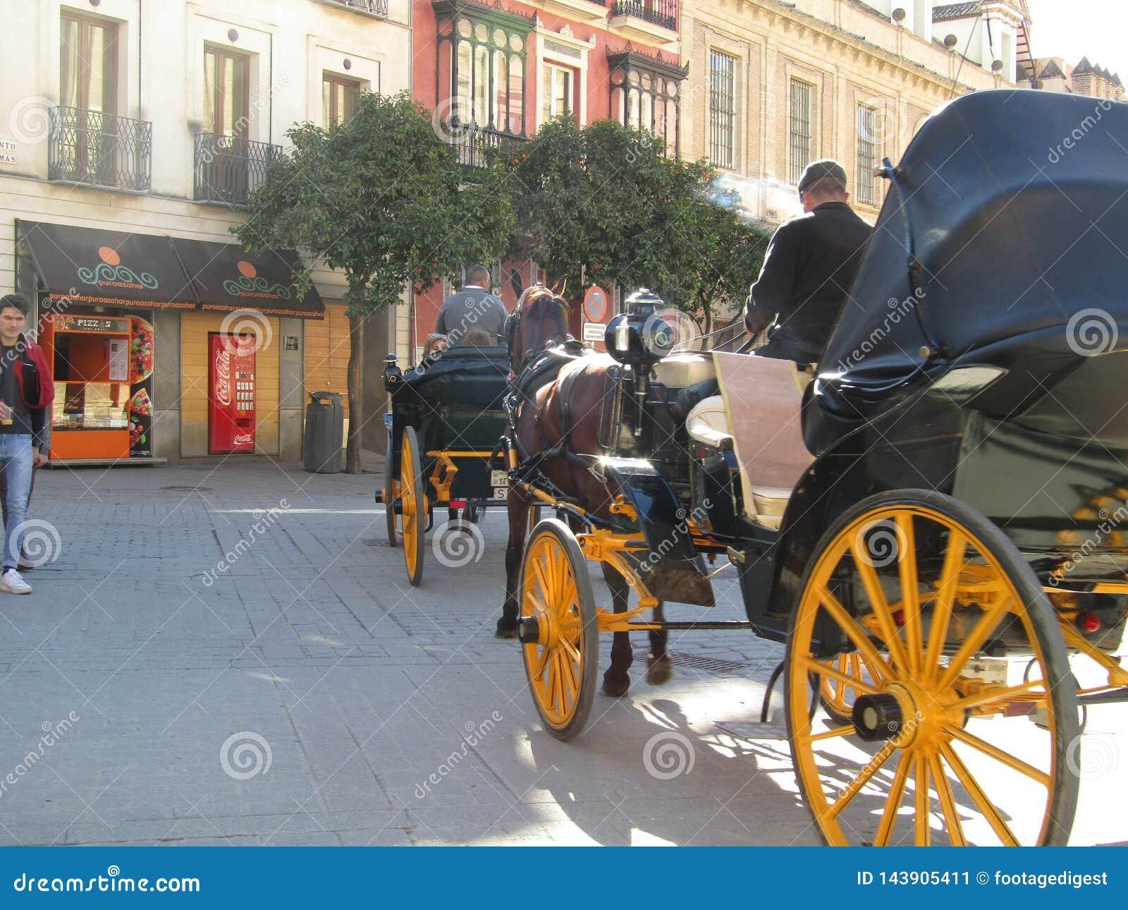 Carros del caballo en Sevilla, España
