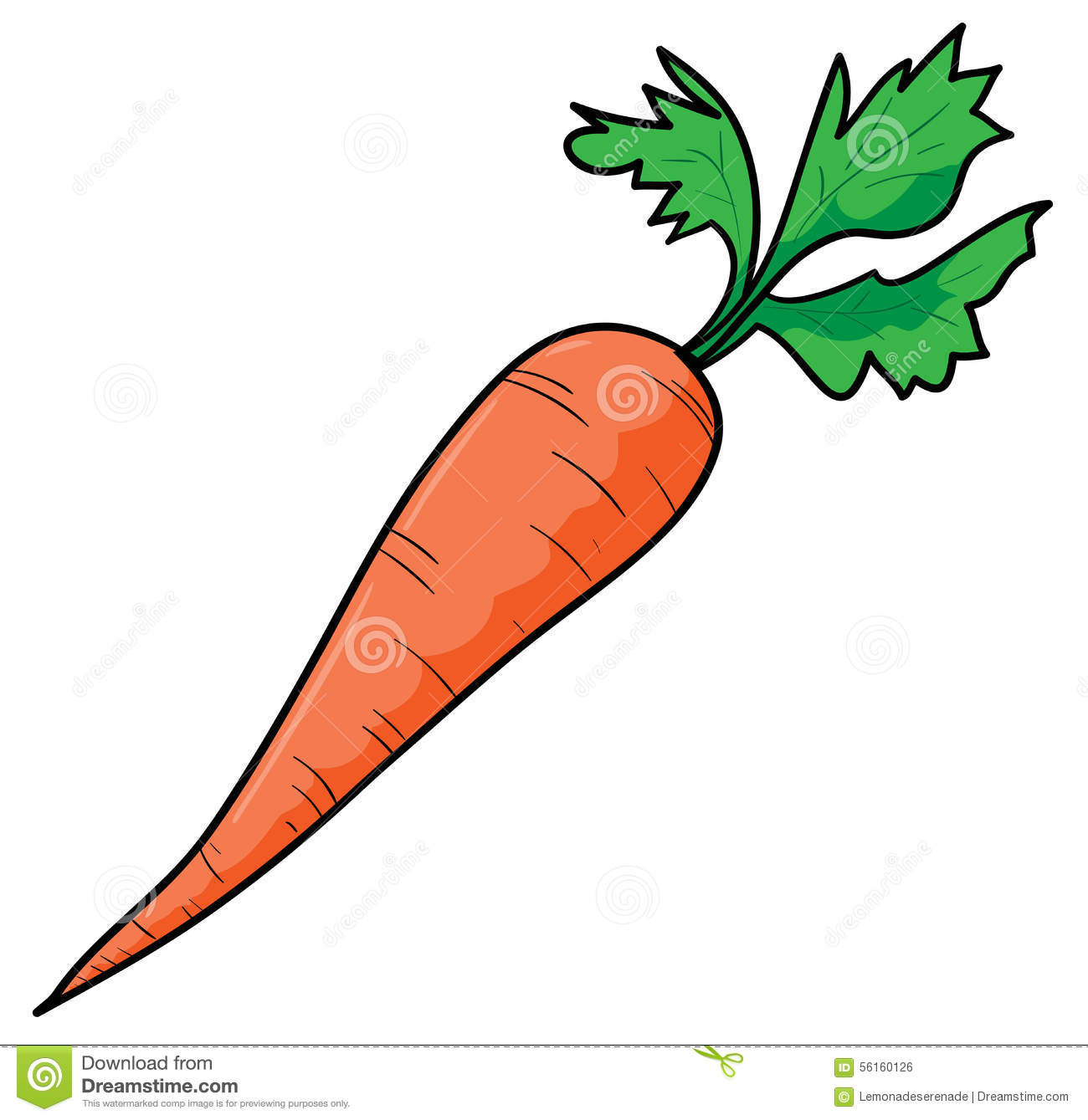hand drawing of a fresh carrot on a white background (editable).