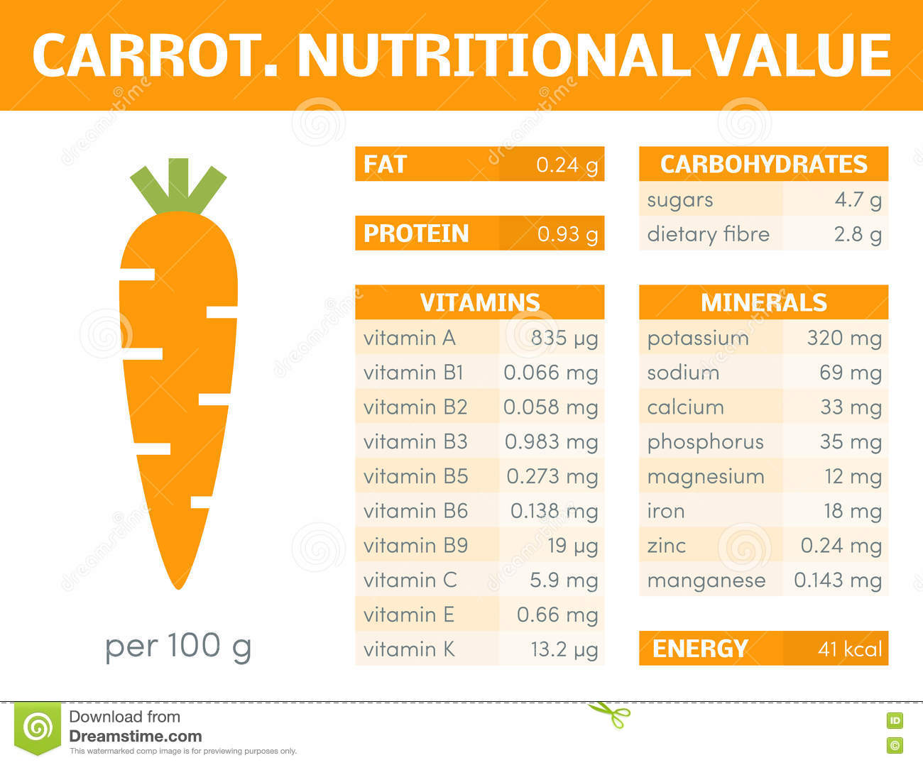 Carrot infographic stock illustration. Image of diet