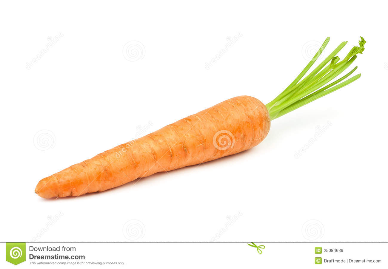 carrot single royalty free stock image image 25084636