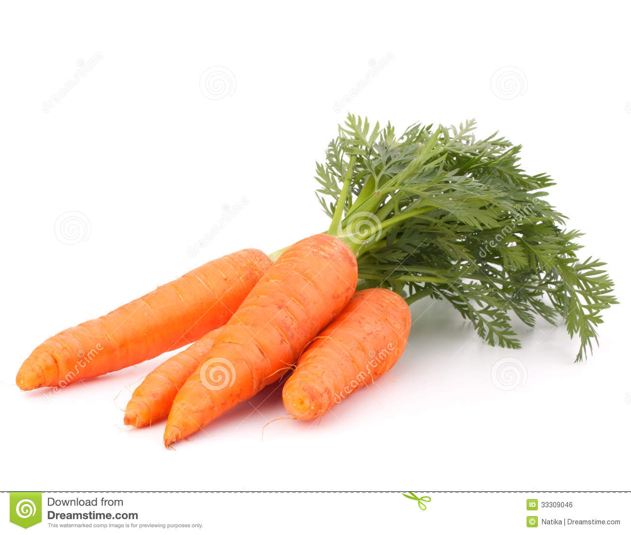 carrot vegetable with leaves royalty free stock image vegetable clip art black and white vegetable clipart broccoli