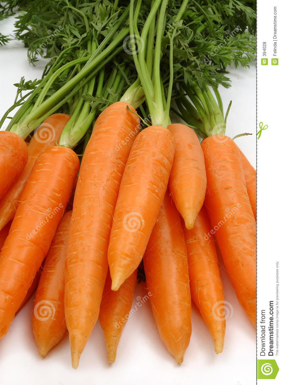 Carrots stock photo. Image of roots, carrot, tasty, healthy