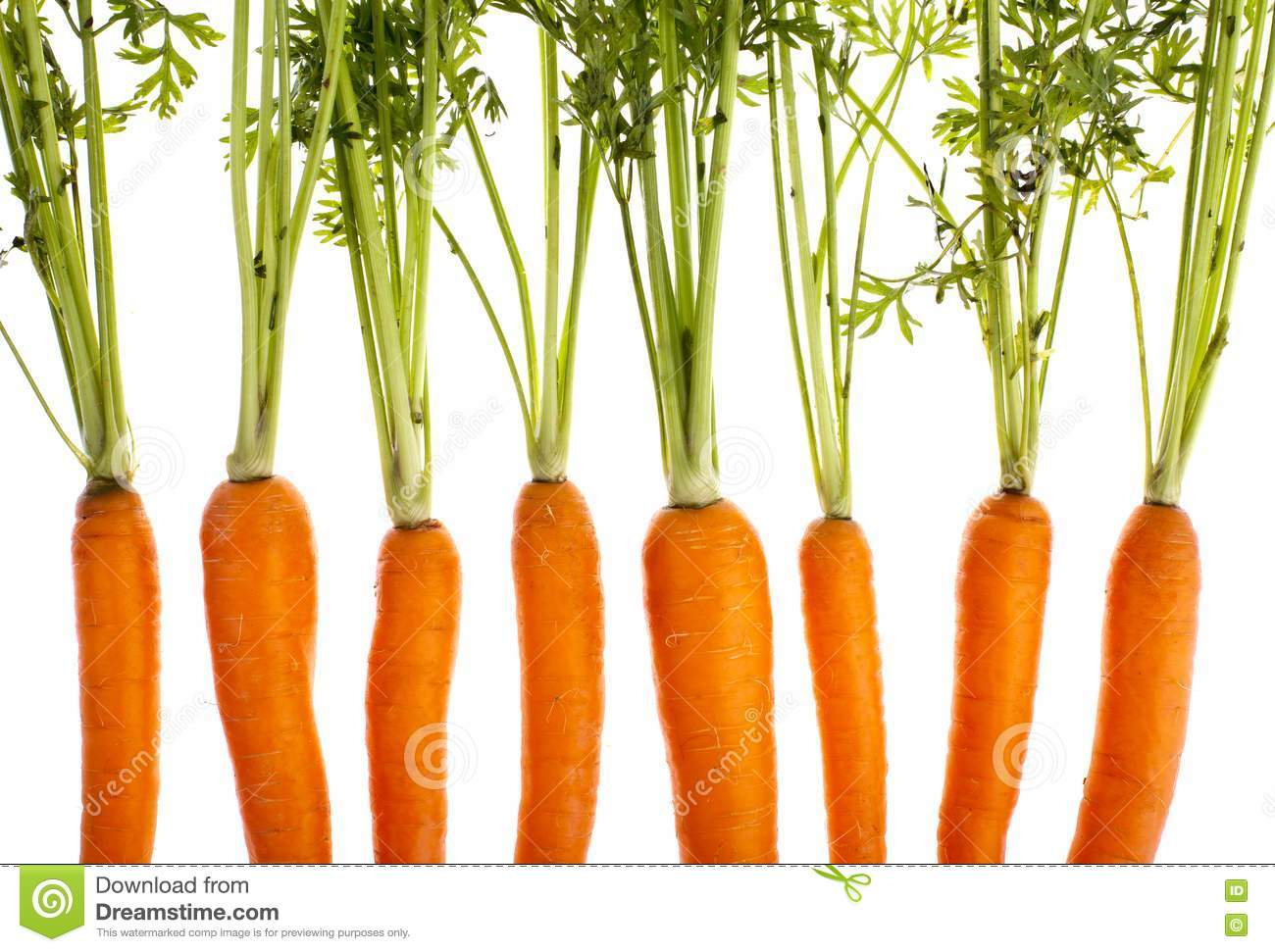 Carrots, Completely Isolated Royalty Free Stock Images - Image ...: dreamstime.com/royalty-free-stock-images-carrots-completely...