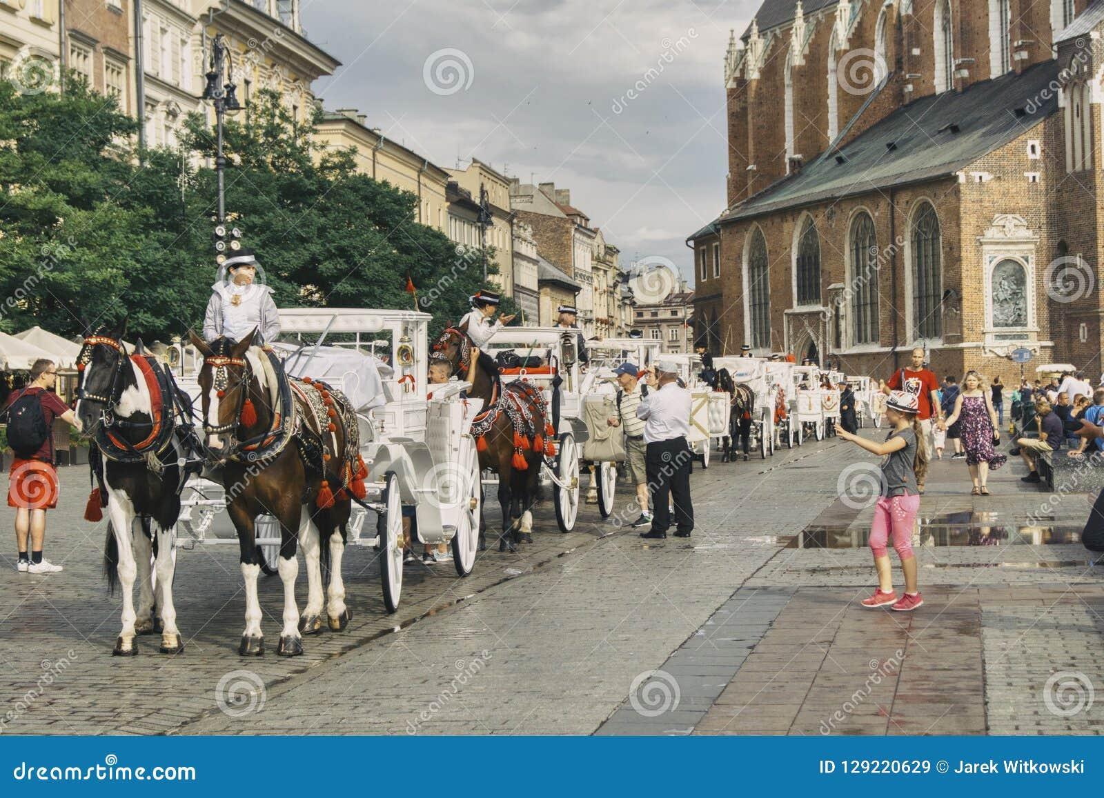 Carrozze bianche per il trasporto dei turisti a Cracovia