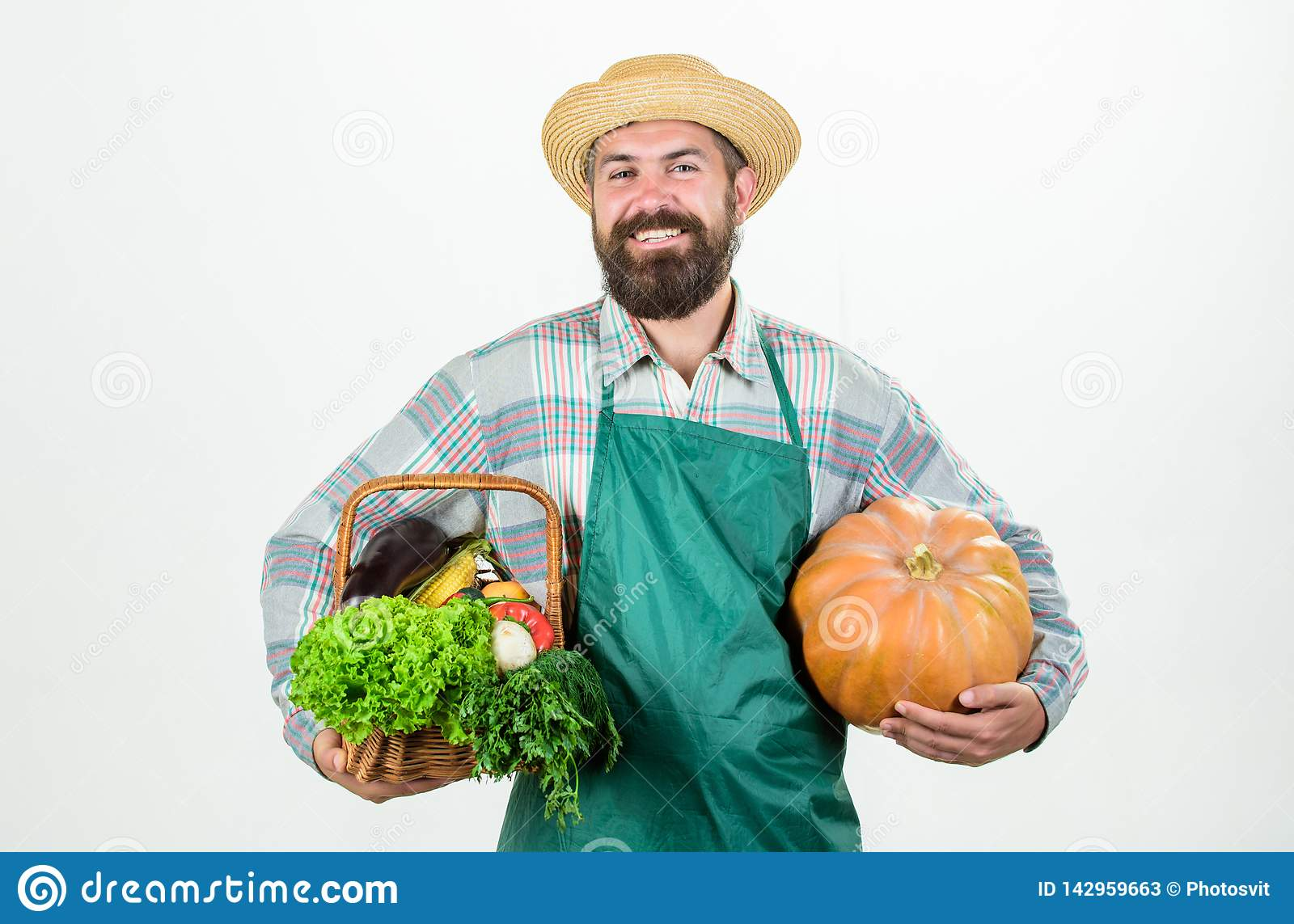 Carrying a healthy bag. organic and natural food. happy halloween. man chef with rich autumn crop. seasonal vitamin food
