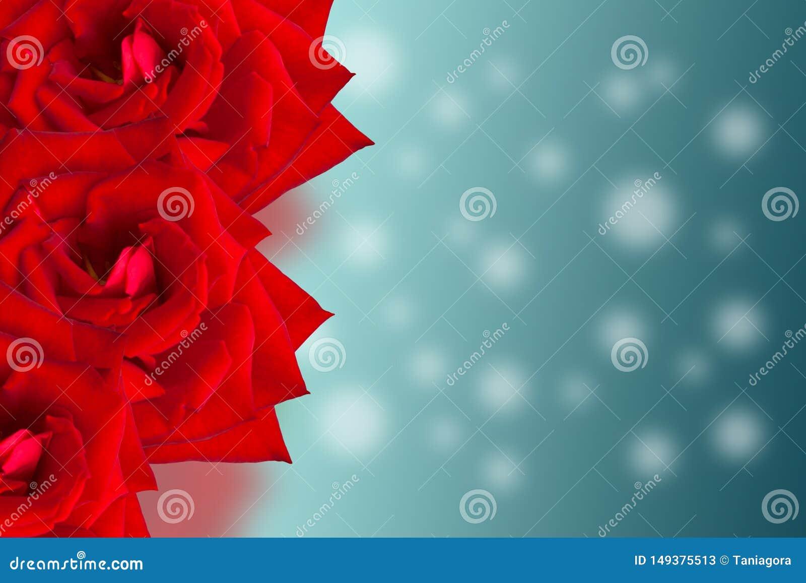 Cartão da colagem do projeto Flores bonitas vermelhas de Rosa