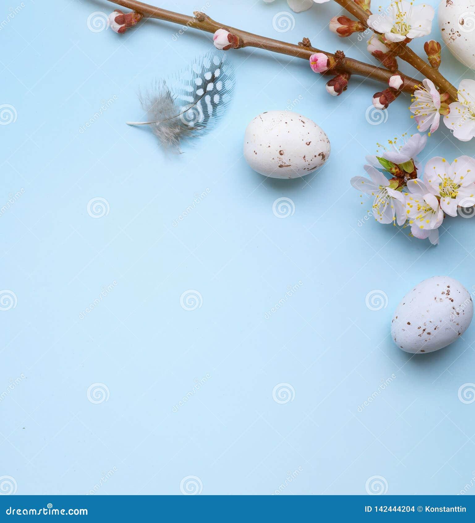 Cartão da Páscoa com ovos da páscoa coloridos e flowersl do sprin na tabela azul Vista superior com espaço para seus cumprimentos