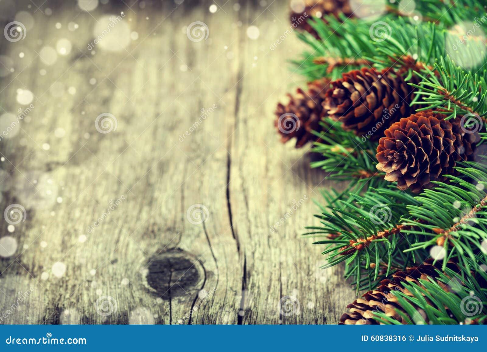 Cartão de Natal da árvore de abeto e do cone das coníferas no fundo de madeira rústico
