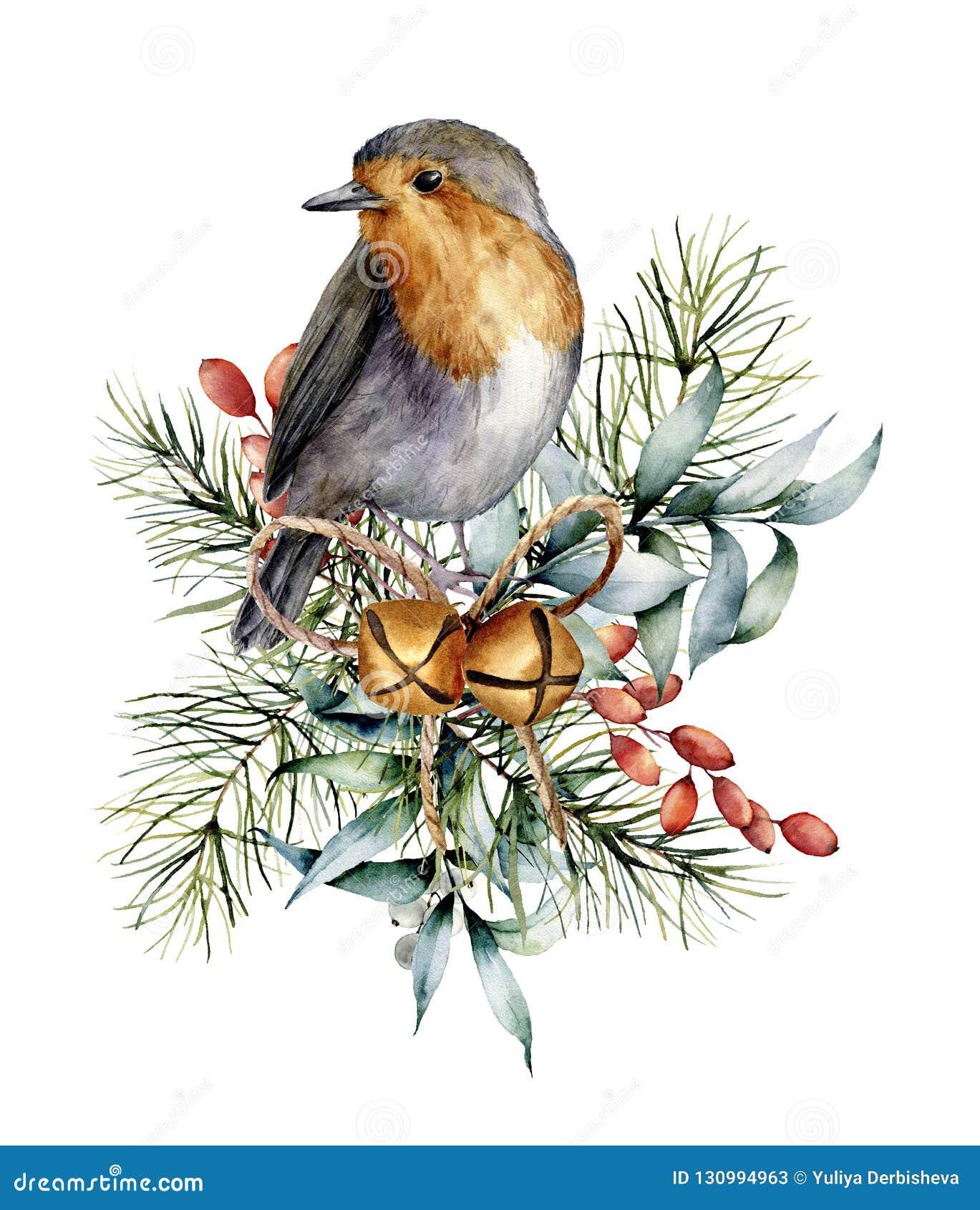 Cartão de Natal da aquarela com pisco de peito vermelho, sinos e projeto do inverno Pássaro pintado à mão com folhas do eucalipto