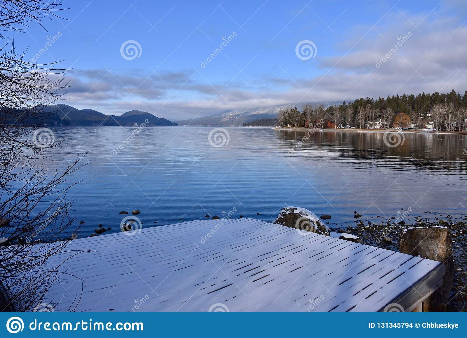 Cartão de Natal do lago whitefish