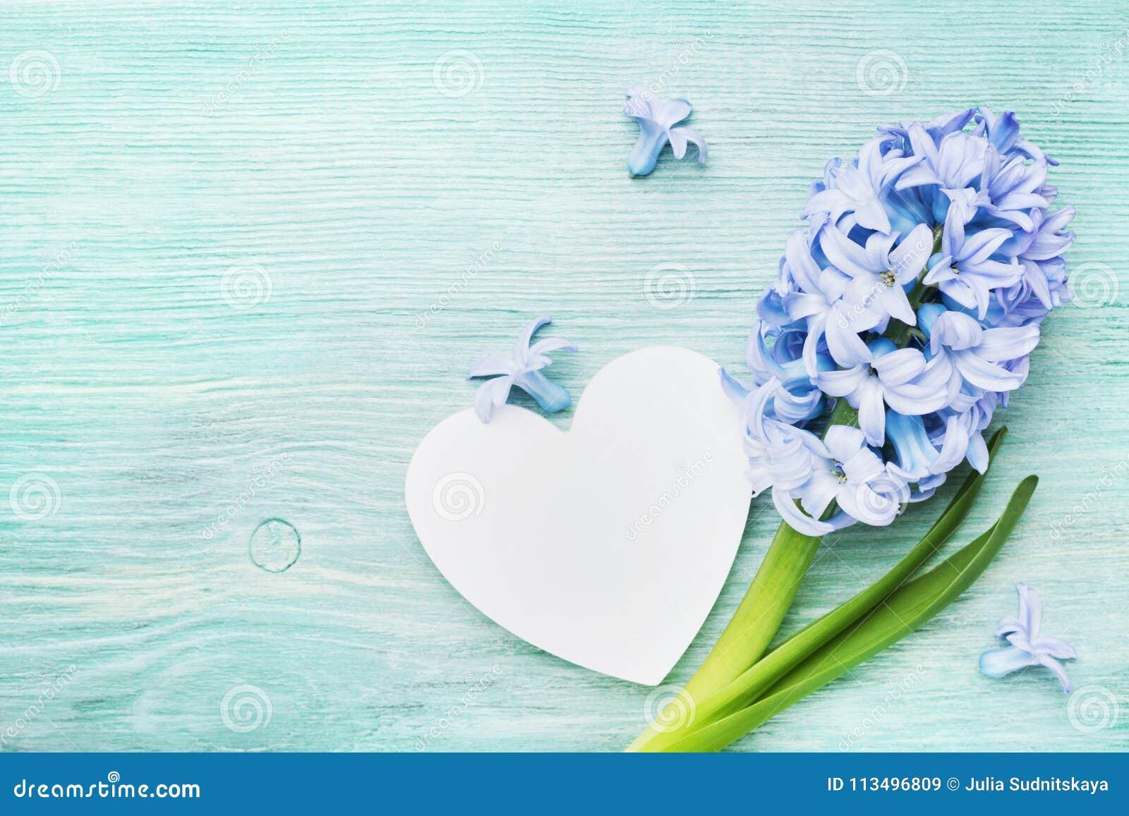 Cartão festivo da mola no dia de mães com flores do jacinto e opinião superior do coração de madeira branco Estilo do vintage