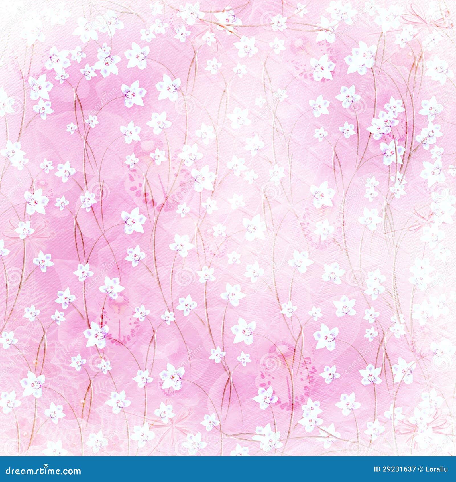 Download Cartão Para O Convite Com Orquídeas E Galhos Ilustração Stock - Ilustração de album, glamour: 29231637