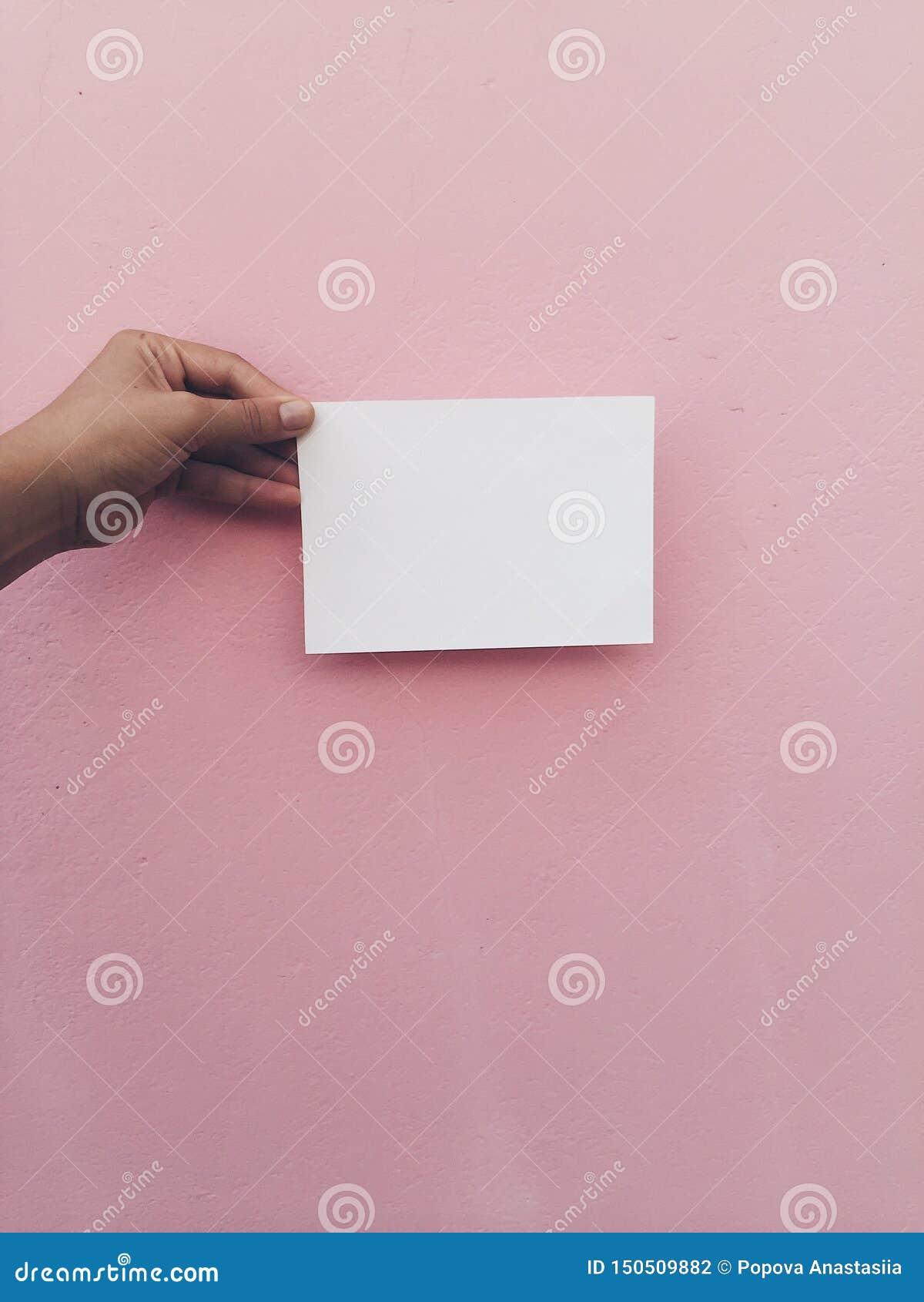 Carta bianca della tenuta della mano al fondo rosa della parete