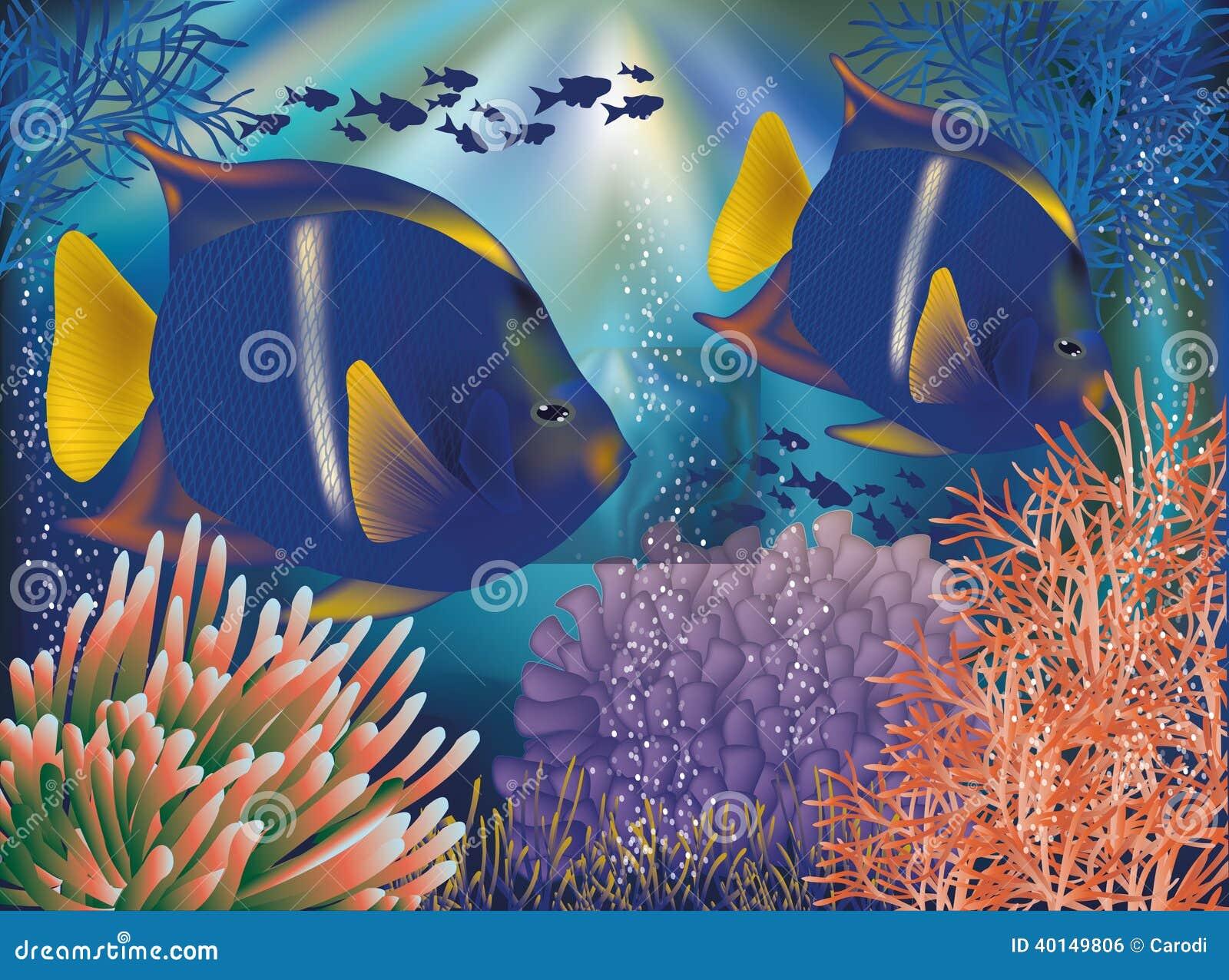 carta da parati subacquea del mondo con il pesce tropicale