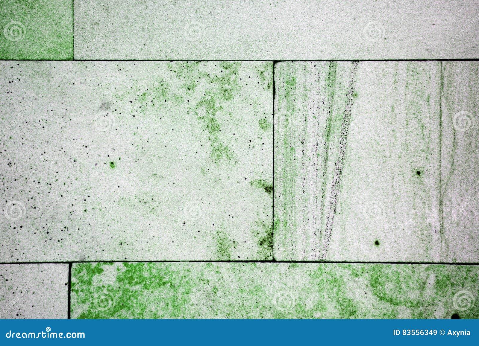 Mattonelle di marmo verdi polished del marmo di verde ming parete