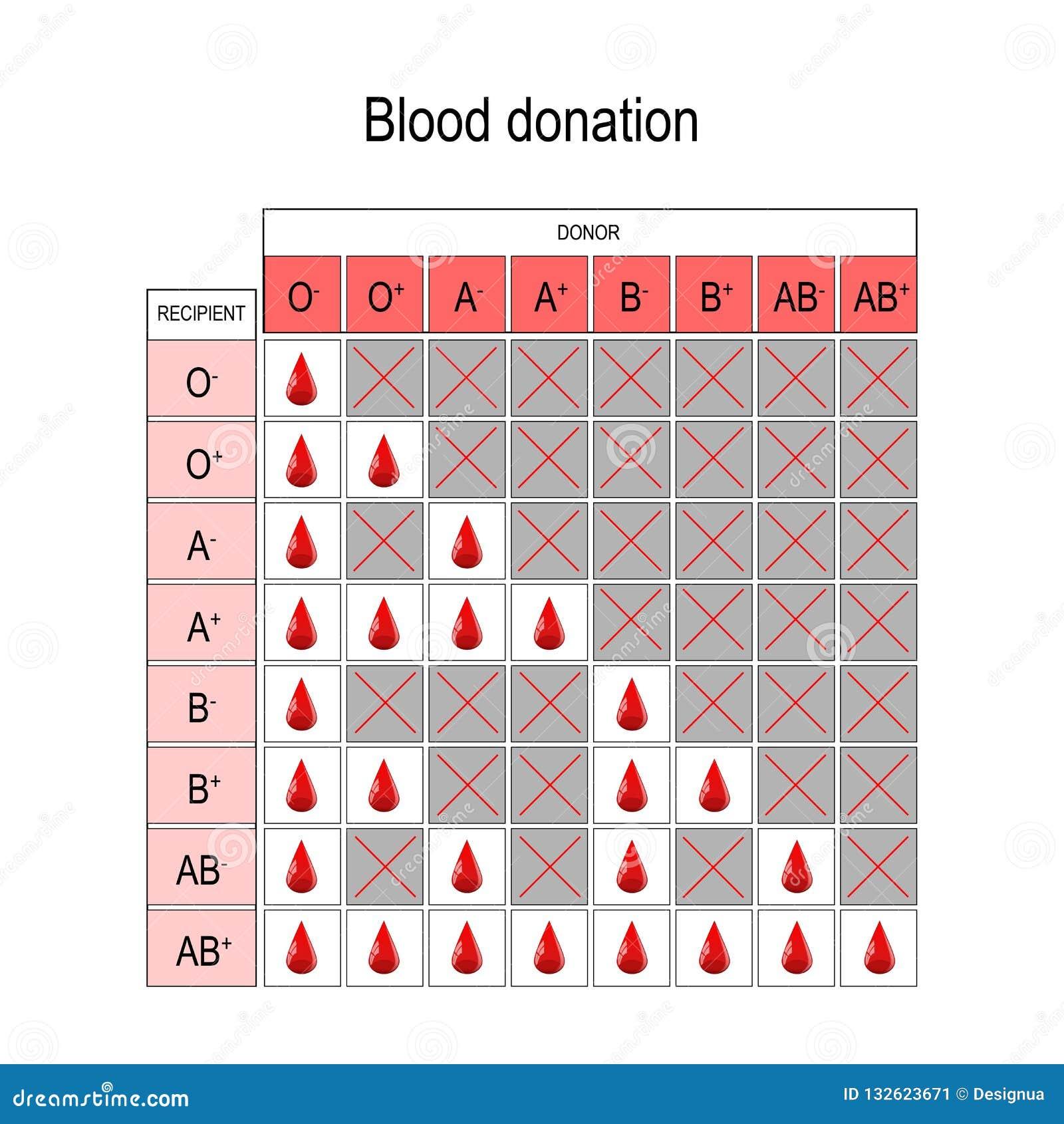 tipos de sangre compatibles con o positivo