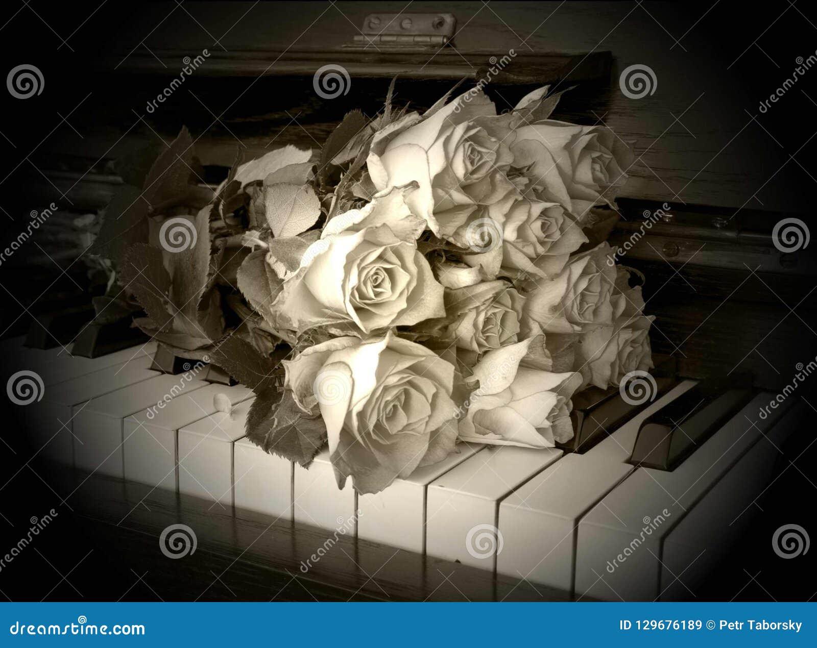 Carta di condoglianza con il fiore