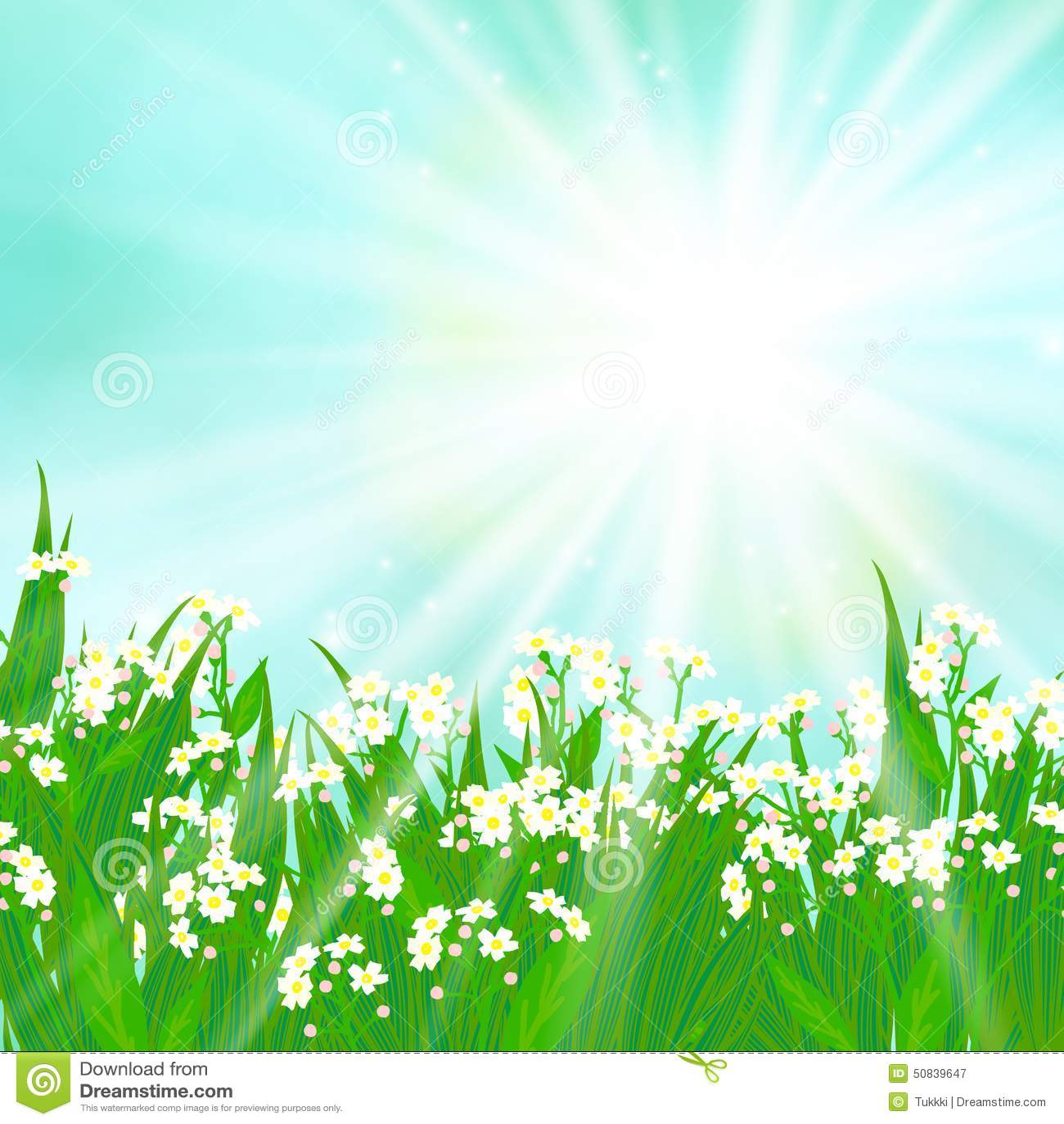 Carta di vettore con i piccoli fiori bianchi illustrazione for Fiori piccoli bianchi