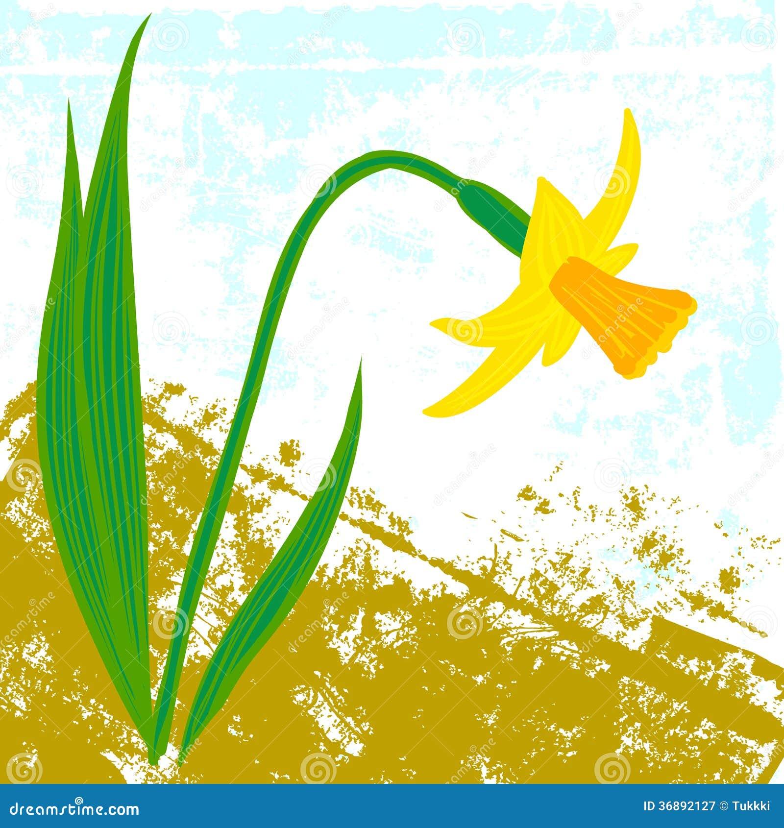 Download Carta Di Vettore Con Un Narciso Illustrazione Vettoriale - Illustrazione di regalo, dissipato: 36892127