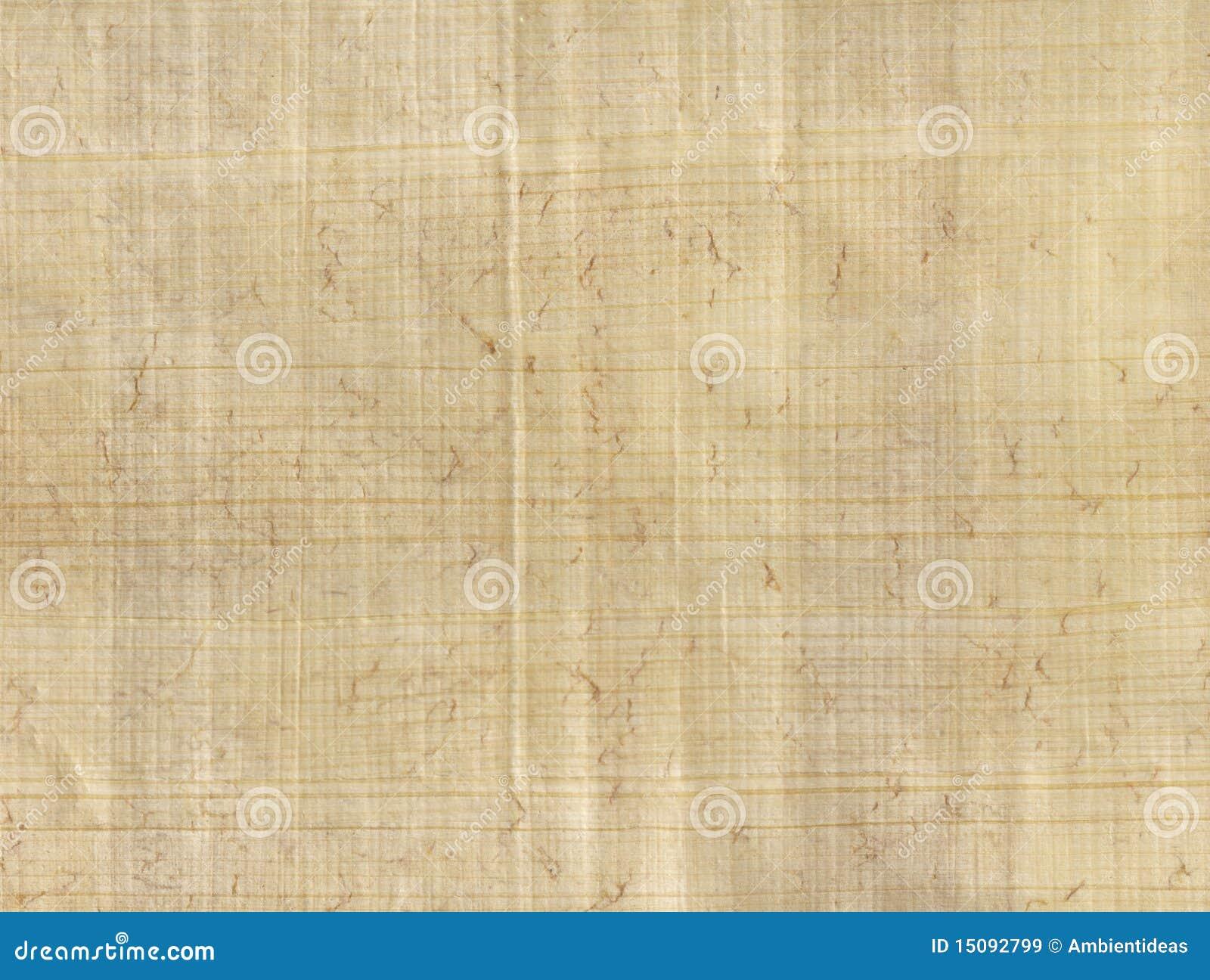 Magna Carta Topics