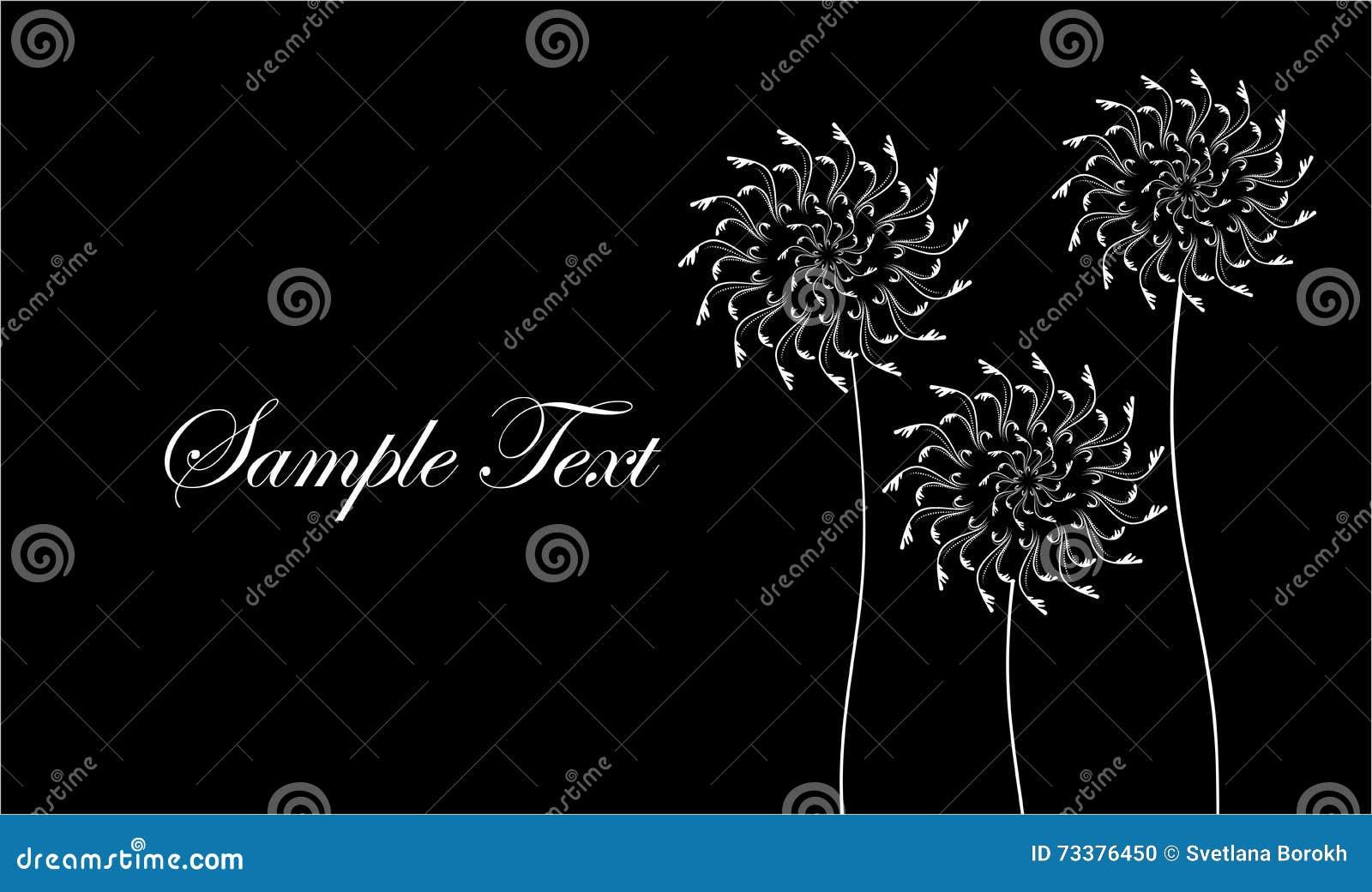 Carte Avec Les Fleurs Abstraites Pissenlits De Visite Professionnelle Noire Et Blanche