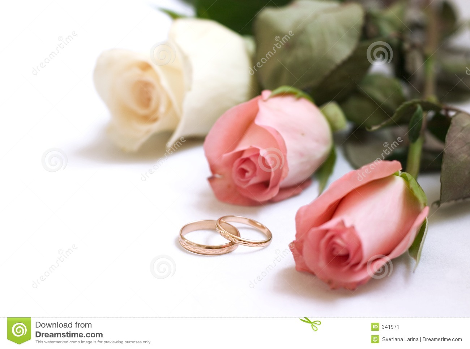 carte d 39 invitation de mariage image stock image du bonheur honeymoon 341971. Black Bedroom Furniture Sets. Home Design Ideas