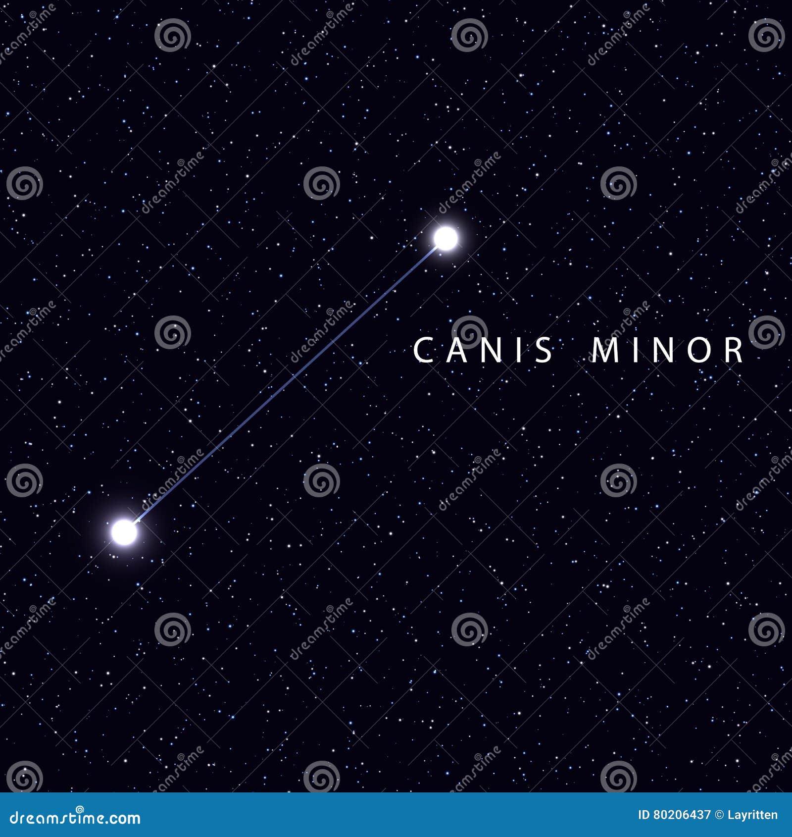 Favori Carte D'étoile De Ciel De Vecteur Avec Des étoiles De  EU49