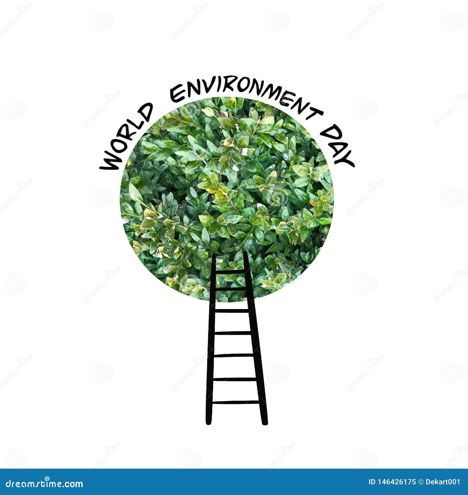 Carte de jour d environnement du monde avec la couronne et les escaliers verts d arbre