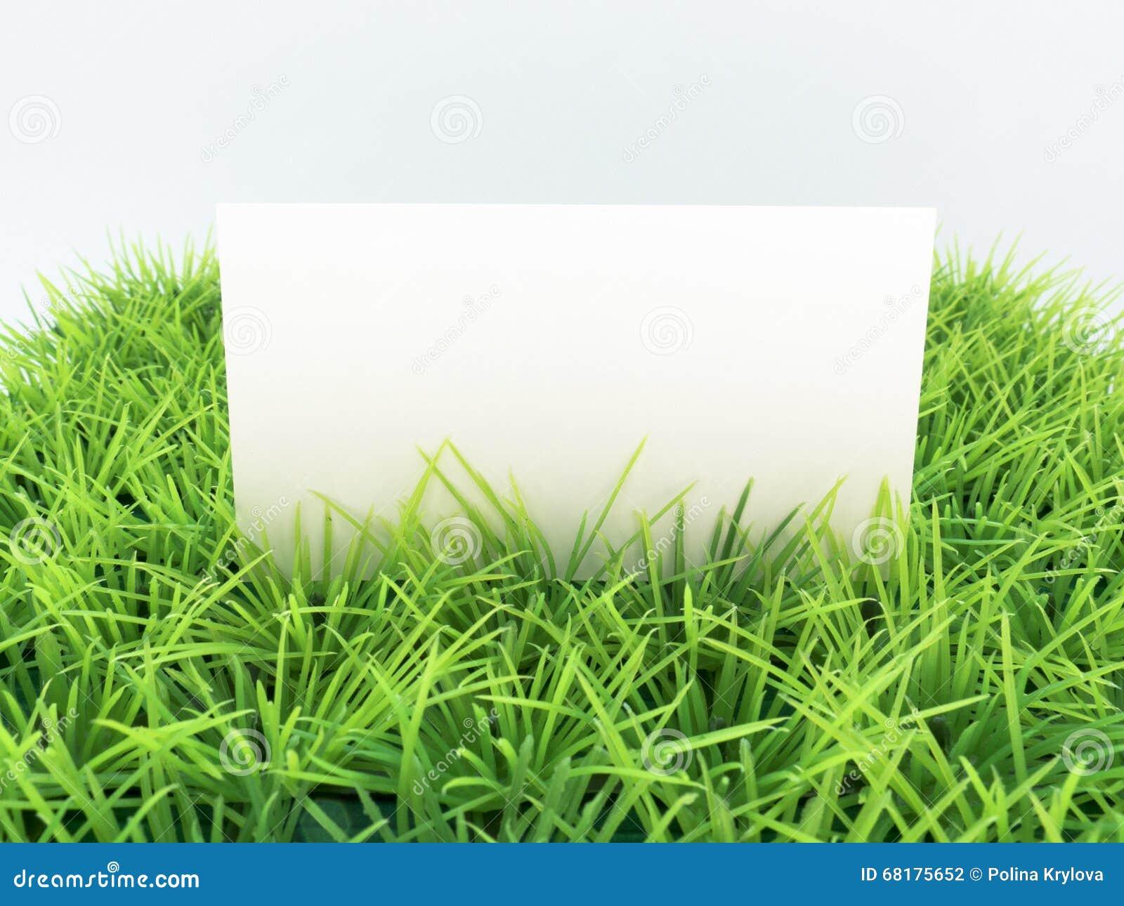 Carte De Visite Professionnelle Blanche Sur L Herbe Verte