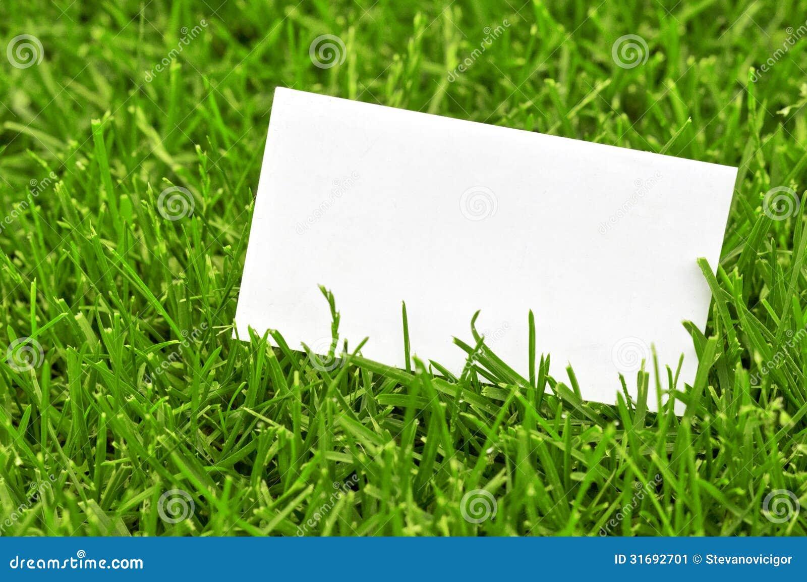 Download Carte De Visite Professionnelle Dans Lherbe Image Stock