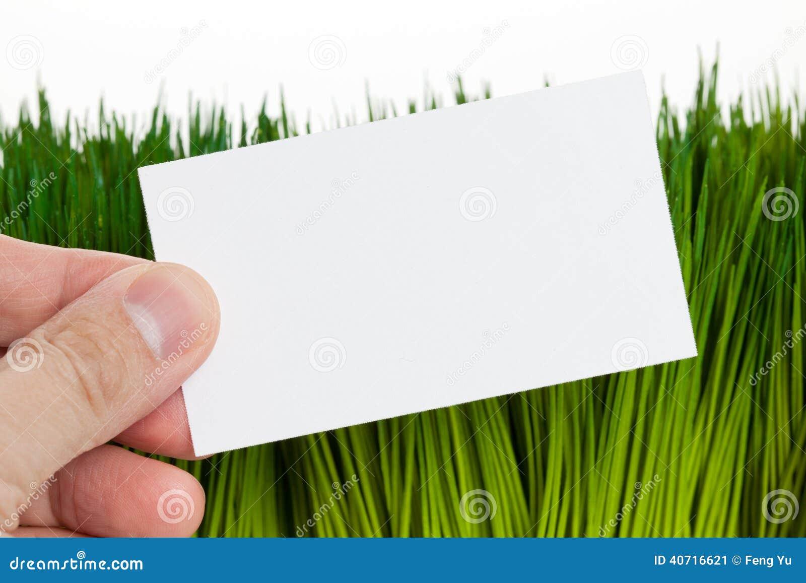 Carte De Visite Professionnelle Et Herbe Verte