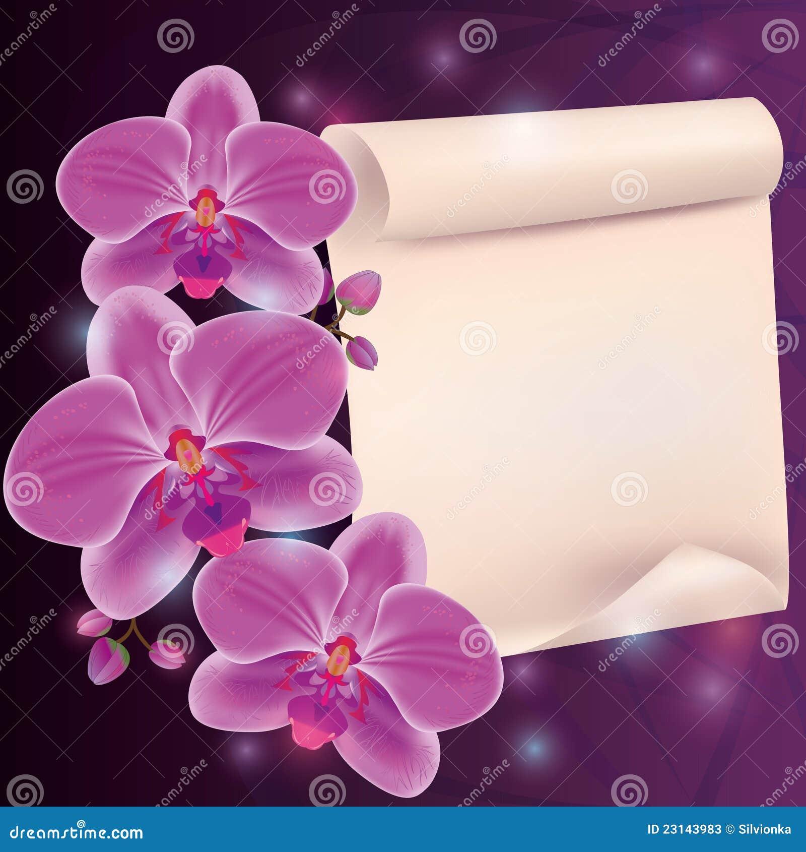Cartes Avec Fleurs Gratuites Idee D Image De Fleur