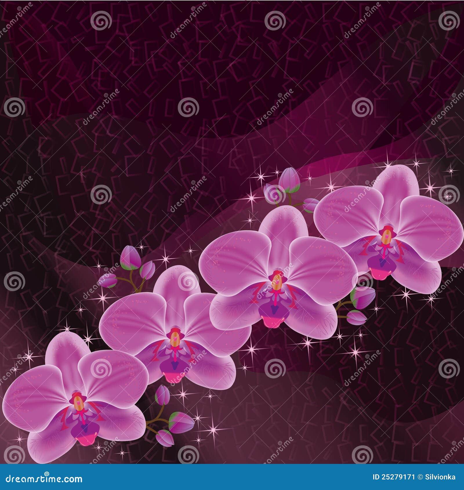 Carte de voeux d 39 invitation ou rouge fonc avec l 39 orchid e - Symbole de l orchidee ...