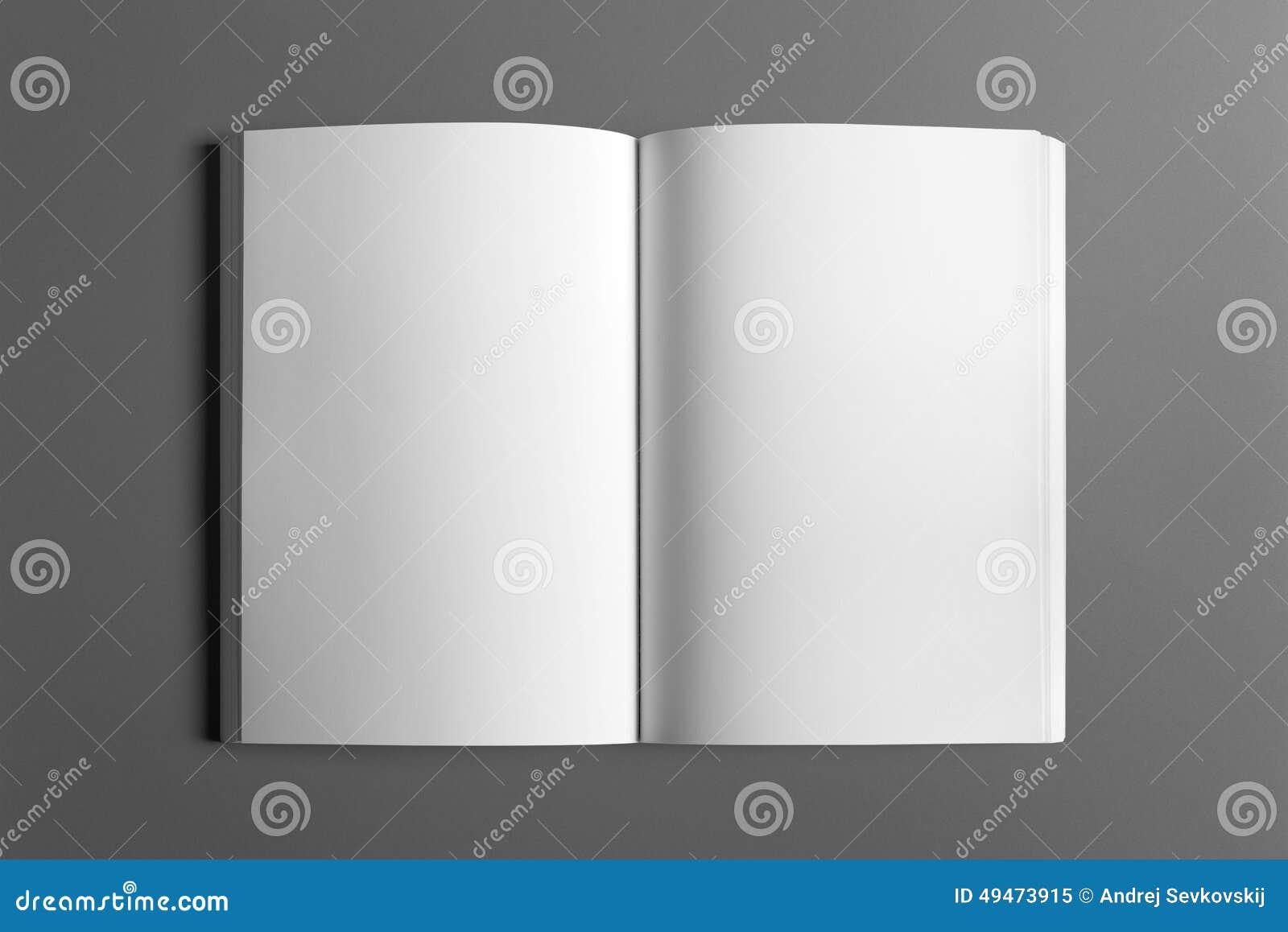 Cartel en blanco del aviador aislado en gris
