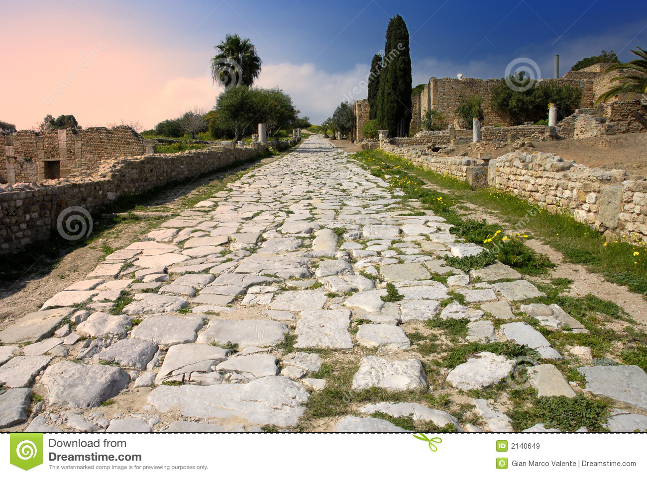 Carthage - romain antique pavé