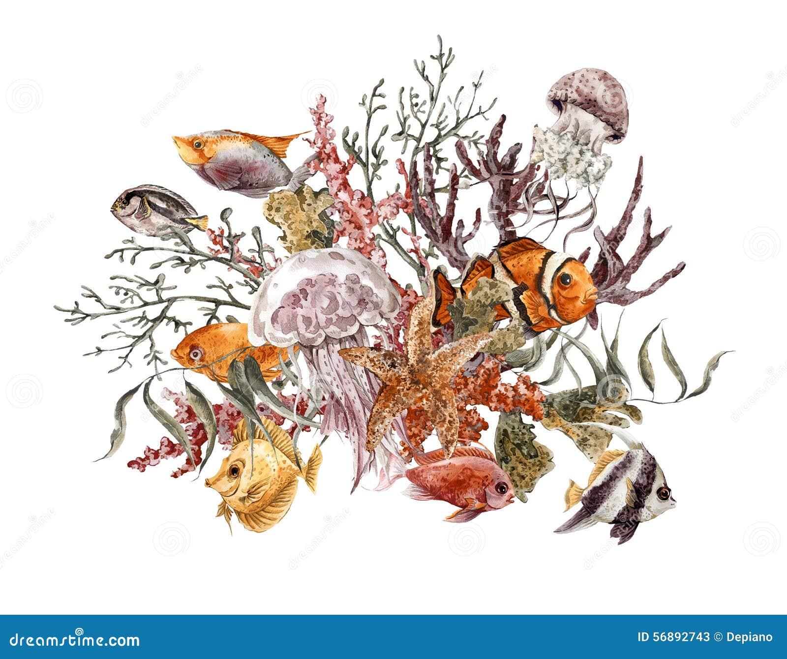 Cartolina d auguri d annata di vita di mare dell acquerello di estate