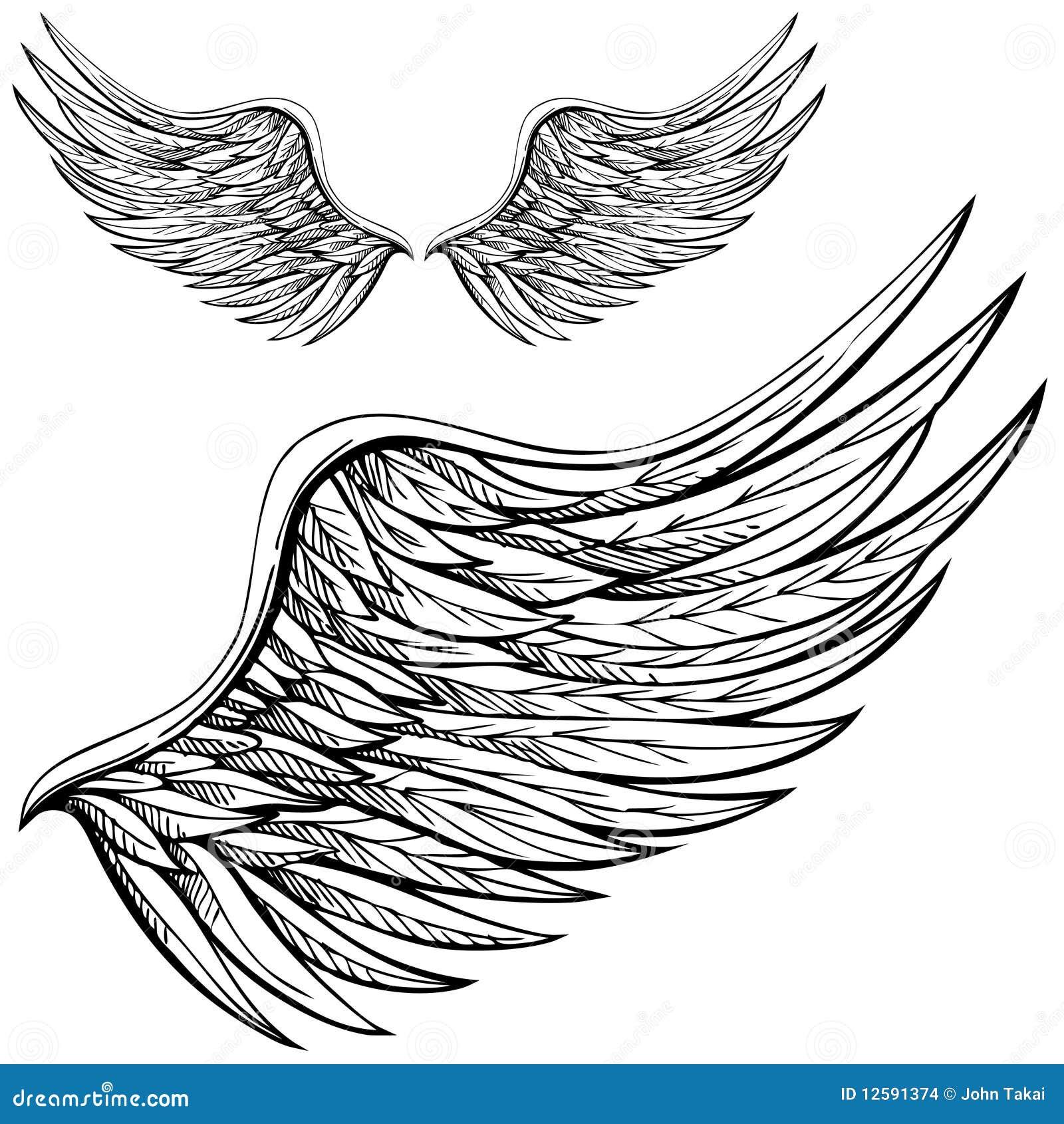 Cartoon Angel Wing Stock Vector. Illustration Of Drawn