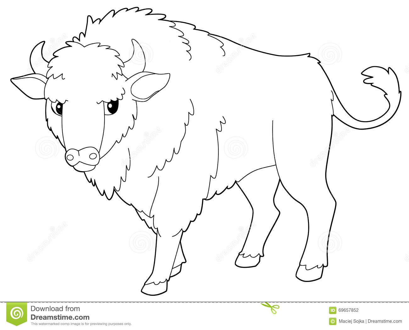 Cartoon Animal - Bison - Isolated - Coloring Page Stock Illustration ...