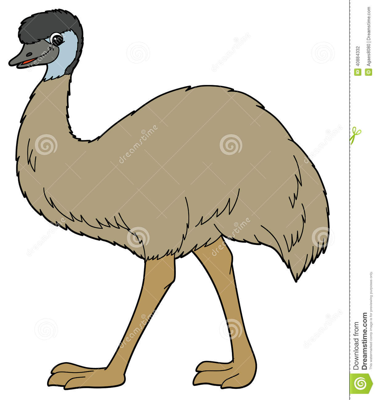 Cartoon Animal - Emu - Illustration For The Children Stock ...