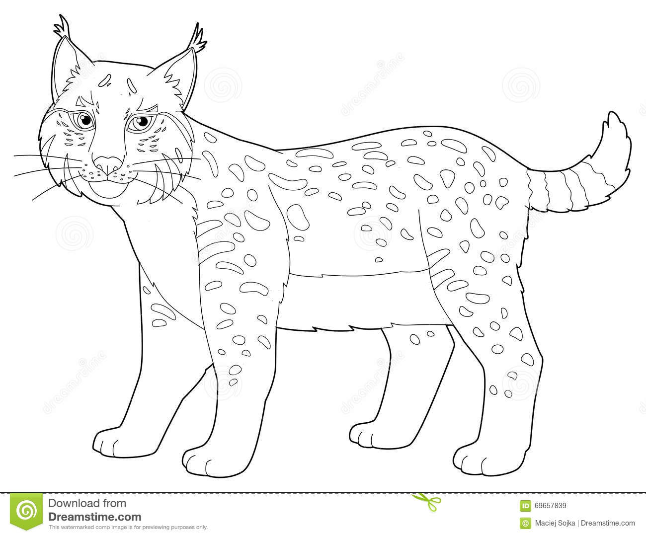 baby lynx coloring pages - photo#19