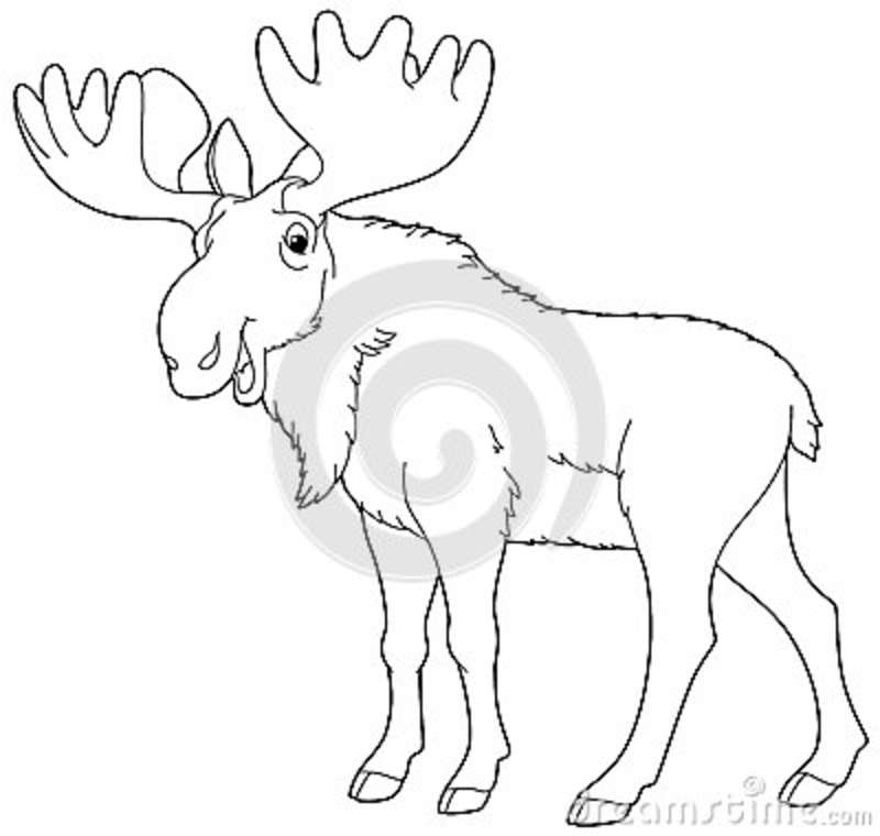 Set Cartoon Moose Coloring Pages Art Stock Vector (Royalty Free ... | 760x800