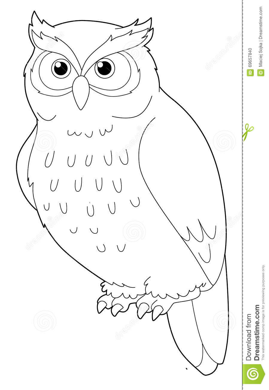 Cartoon Animal Owl Isolated Coloring Page Stock
