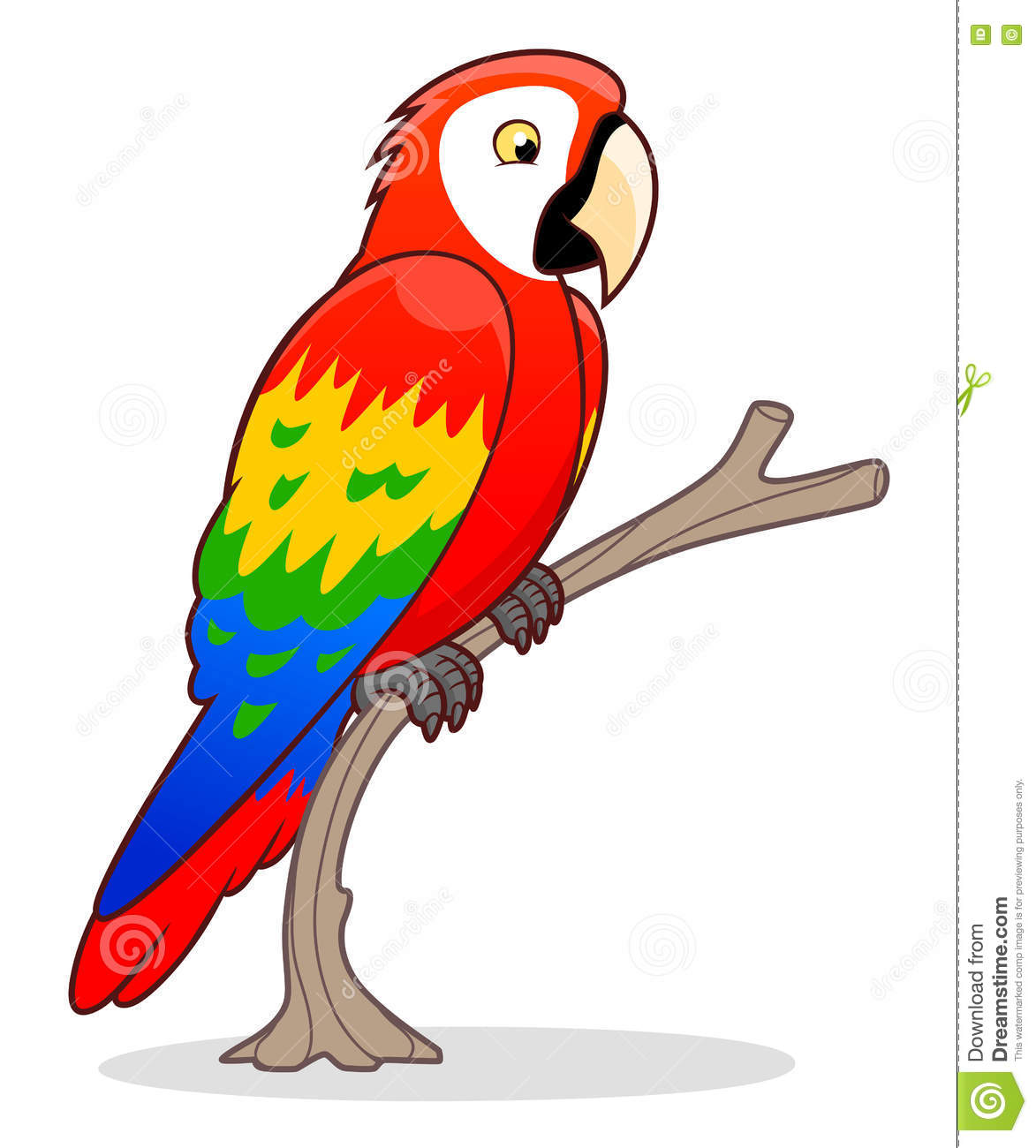 parrot cartoon pictures www imgkid com the image kid parrot clip art to color parrot clip art free black and white