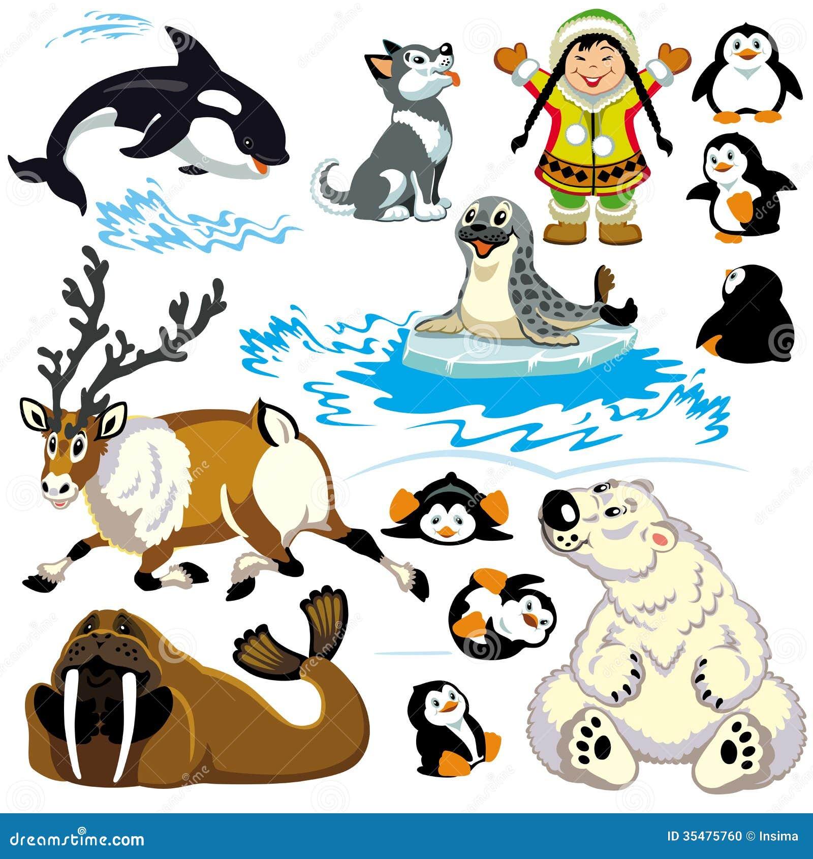 antarctic animals for kids - photo #10